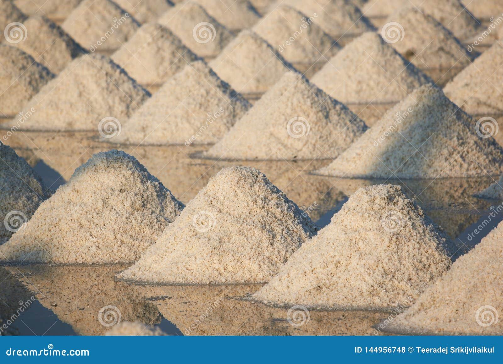 Solljus och skugga av saltar pannamodell I