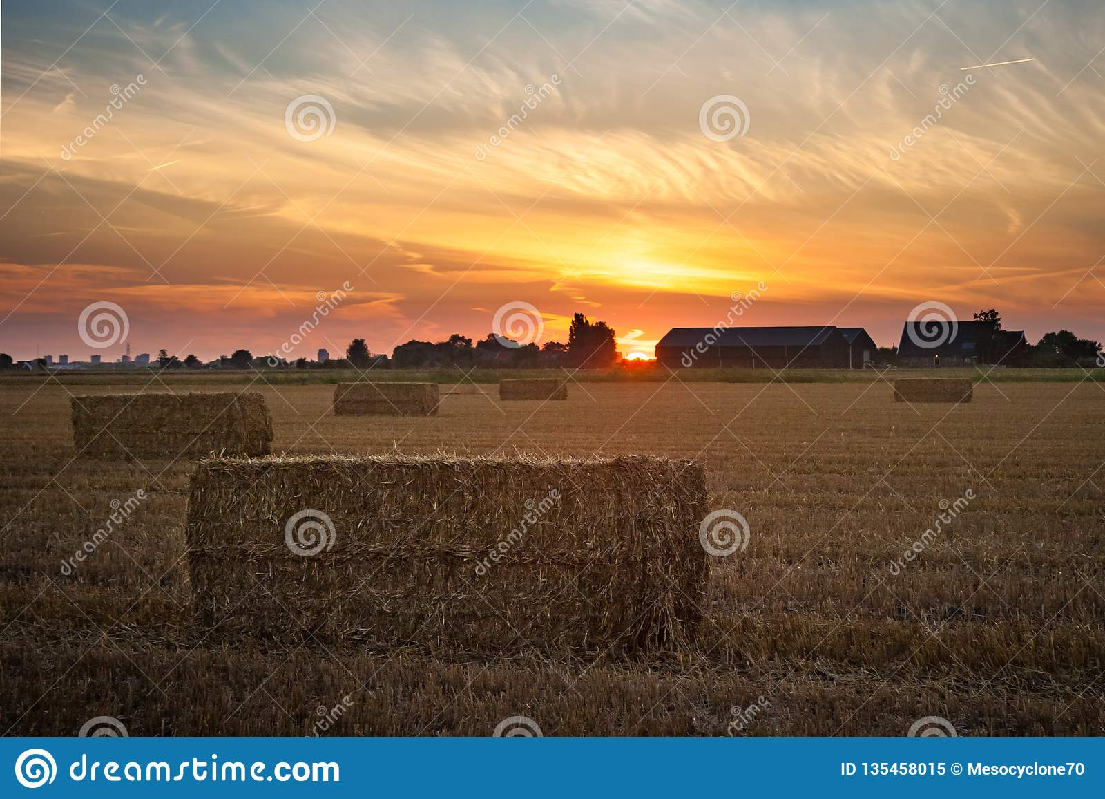 Solnedgång över den holländska bygden med höbaler