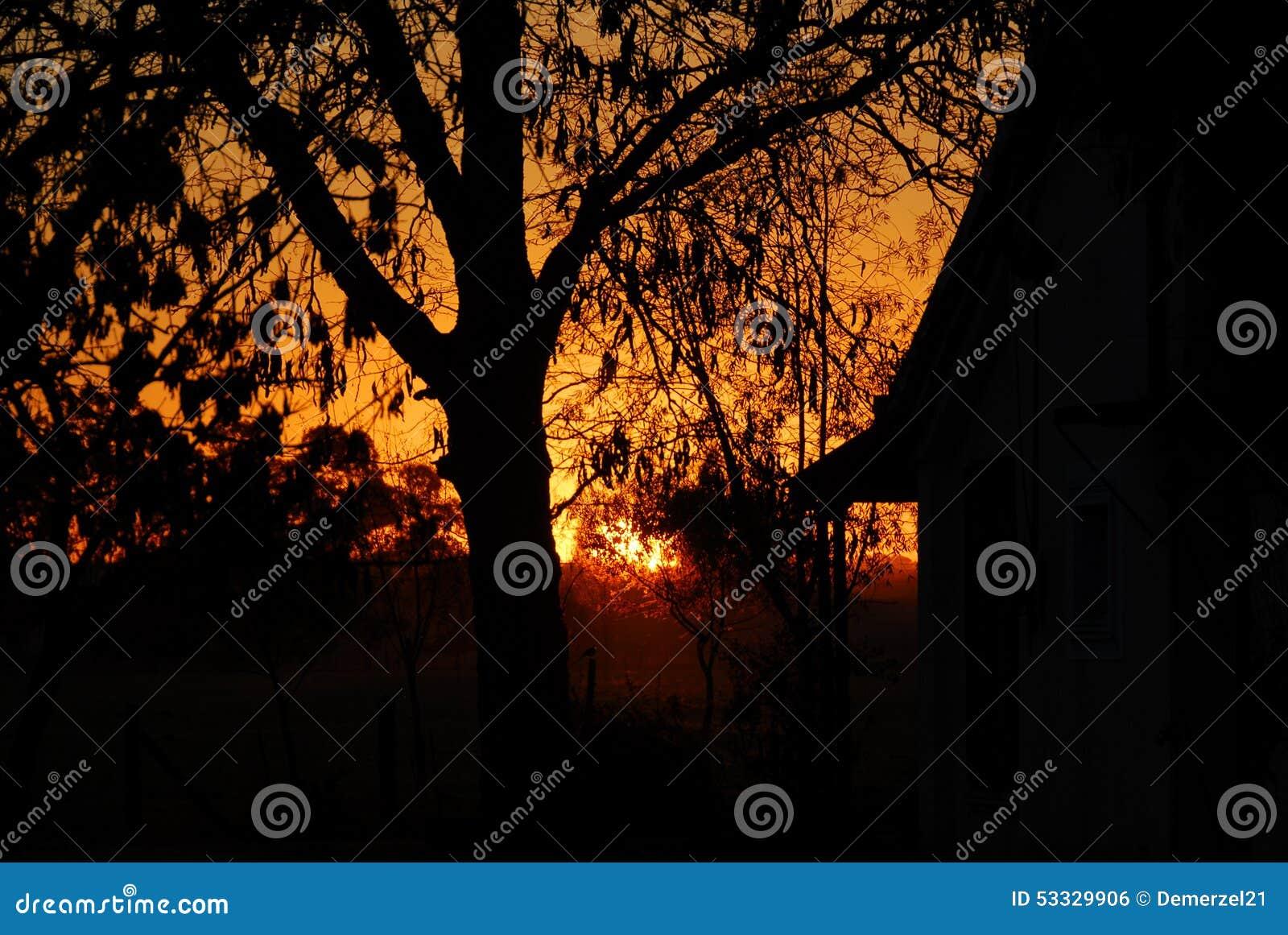 Solnedgång över en ranch