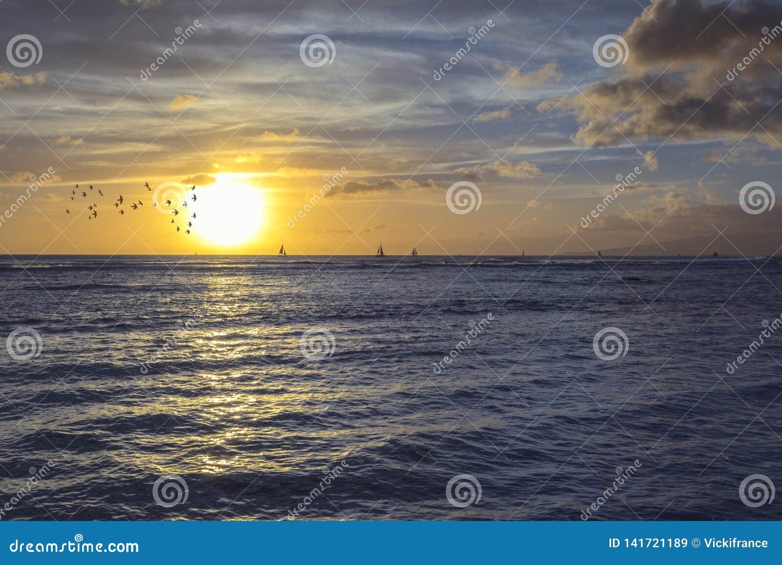Solnedgång från en tropisk strandö