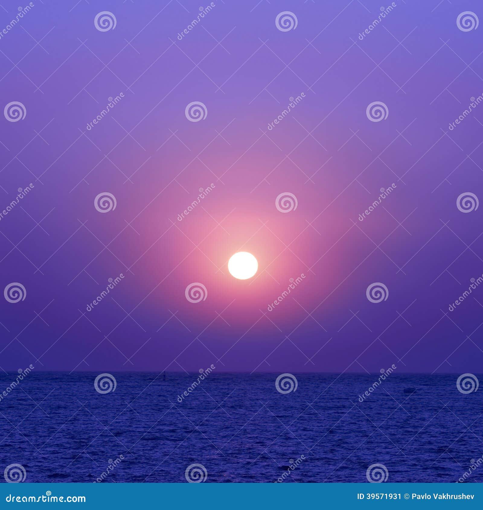Solnedgång och seaguls