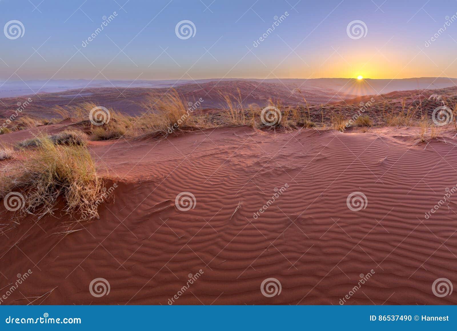 Solnedgång på dyn