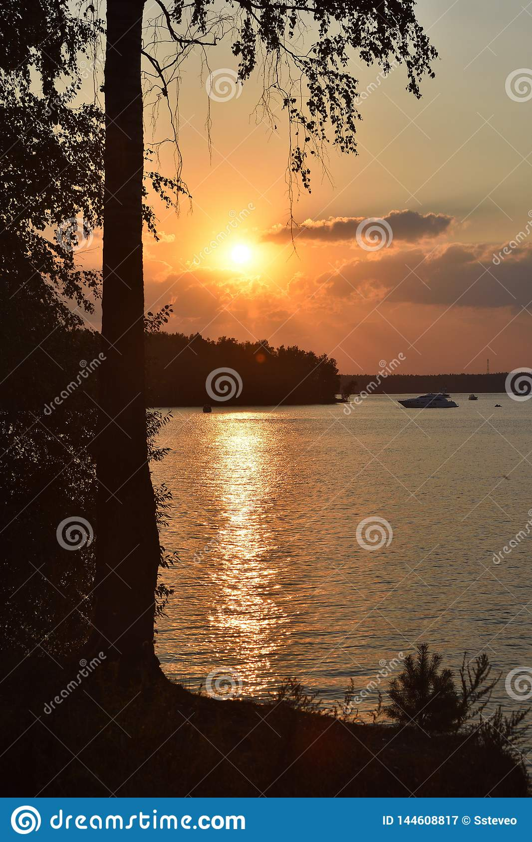 Solnedgång på sjön, kontur av en björk på en solnedgångbackgroun