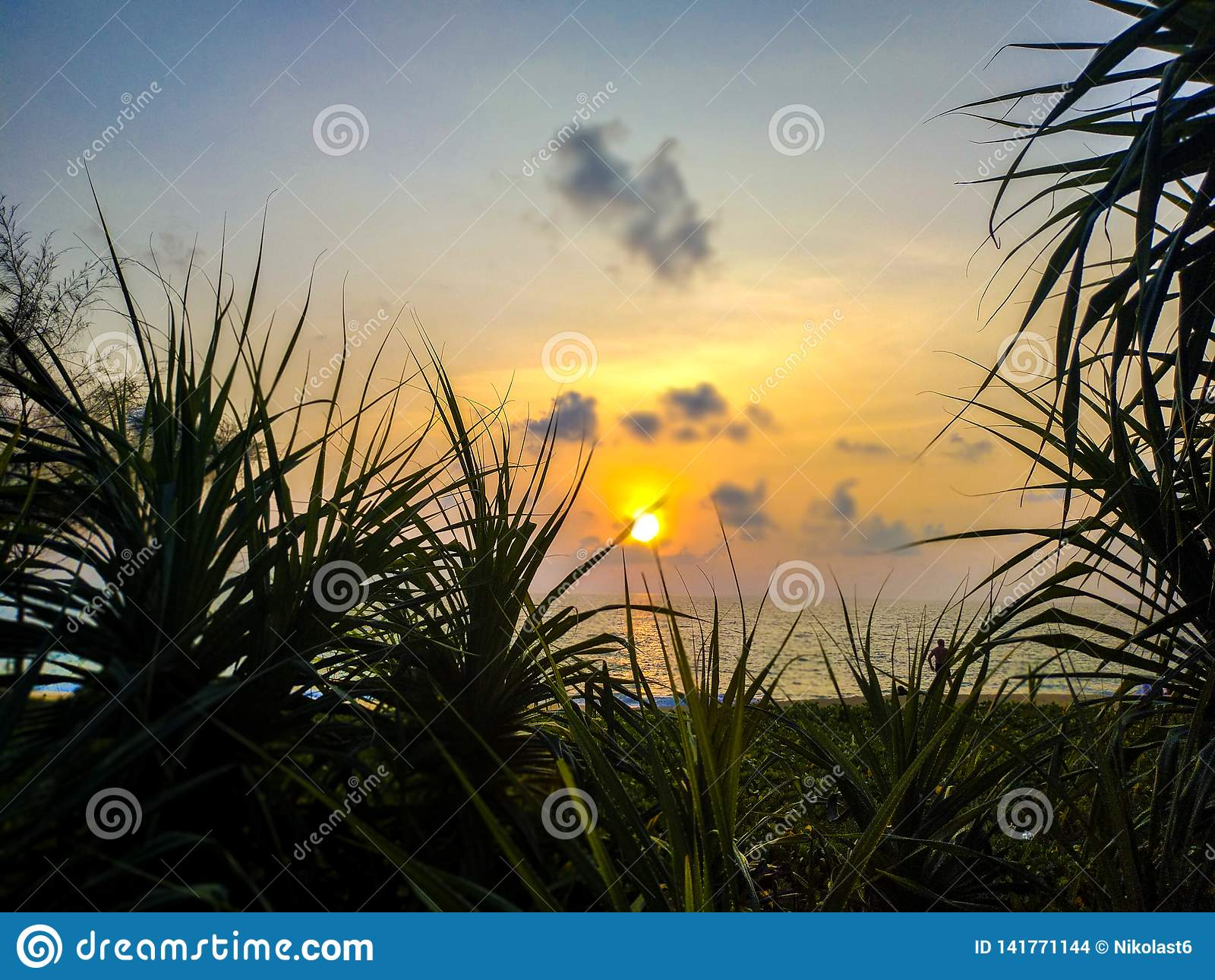Solnedgången över havet och sörjer