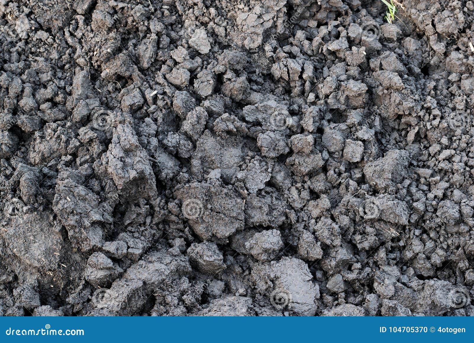 Solo cinzento, torrão do solo, solo seco, protuberância do solo