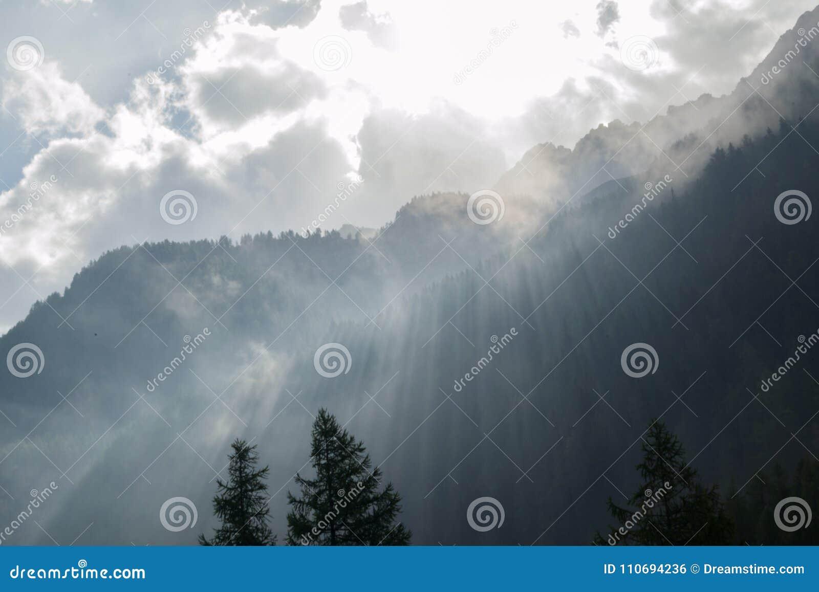 Solstrålar över forested bergkant