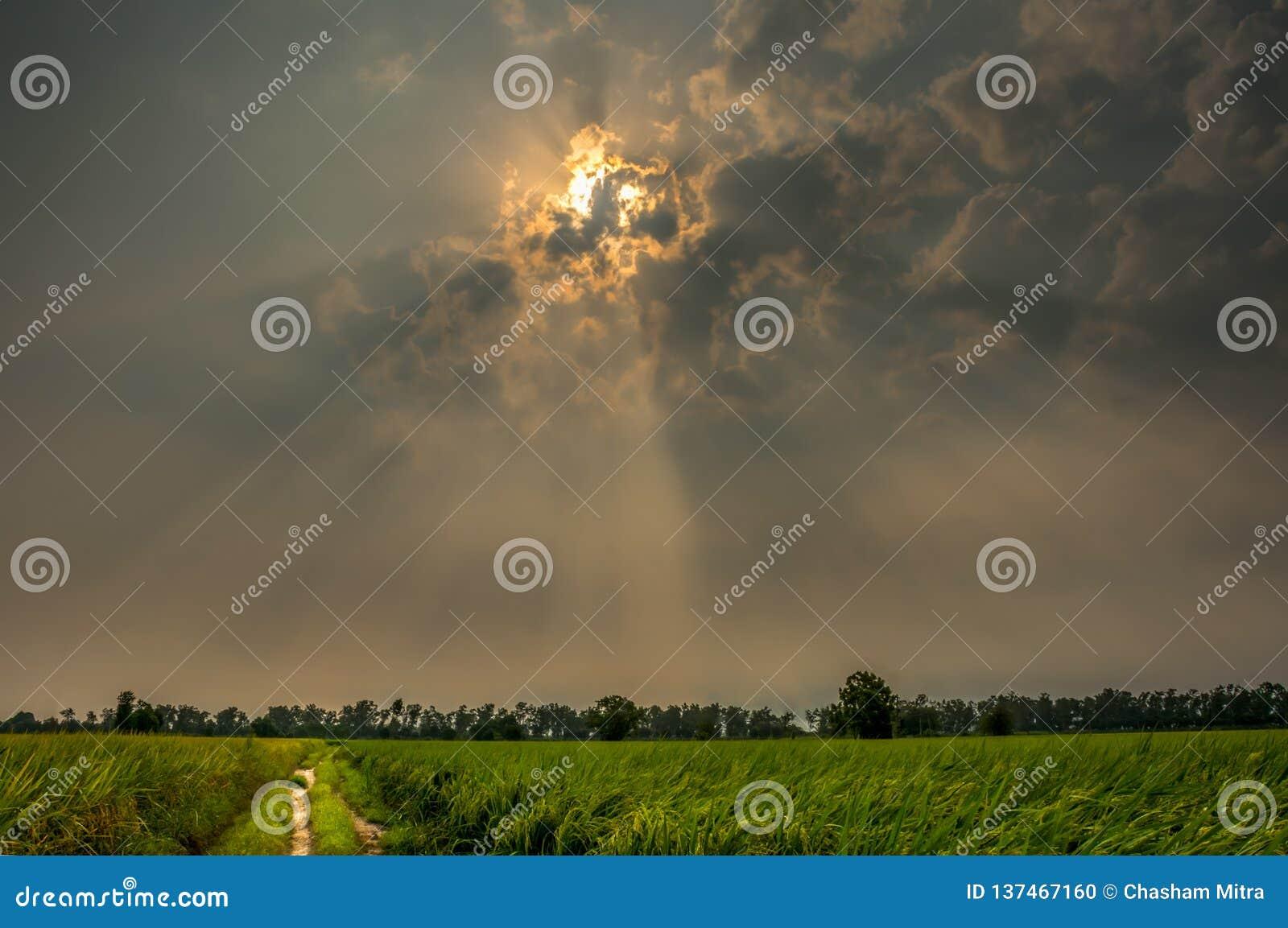 Solstrålar på soluppgång i lantgårdar för en by