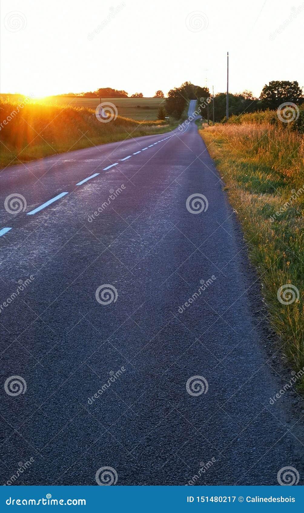 Soluppgång över en väg och några fält i Bourgogne i Frankrike