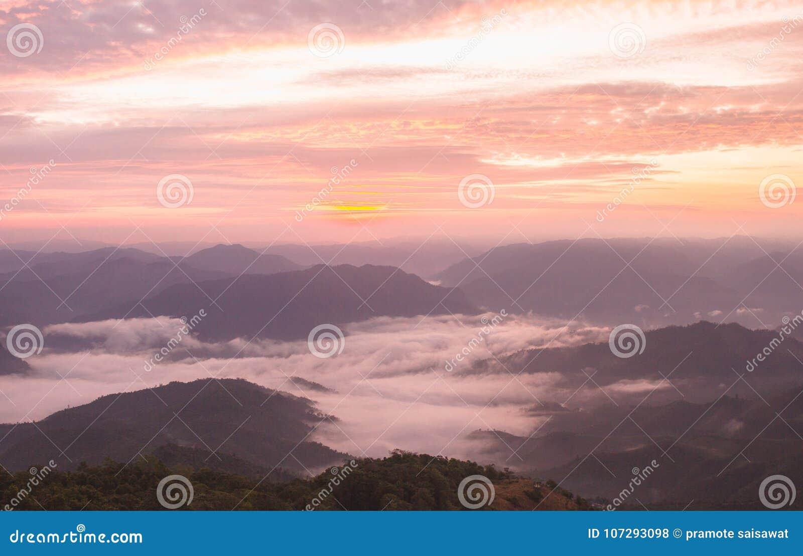 Soluppgångljus och mist