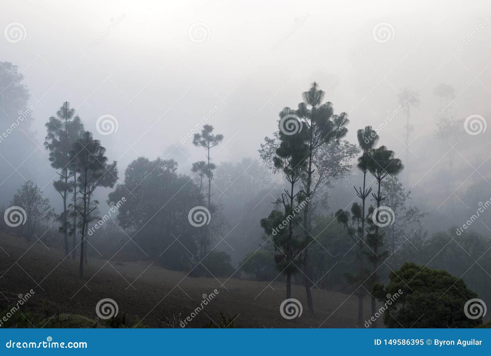 Soluppg?ngberg odlade med pittoreska byar i lantliga Guatemala, mist och frost Central America