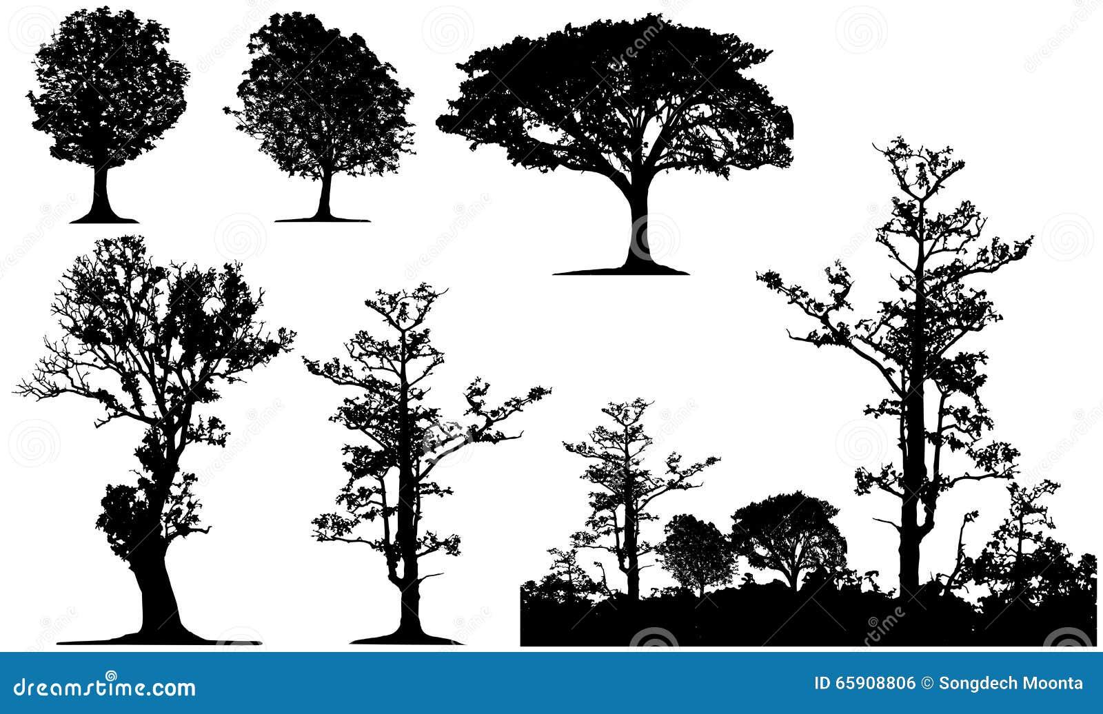 Som design inkorporerat bruk för silhouettetexturtree