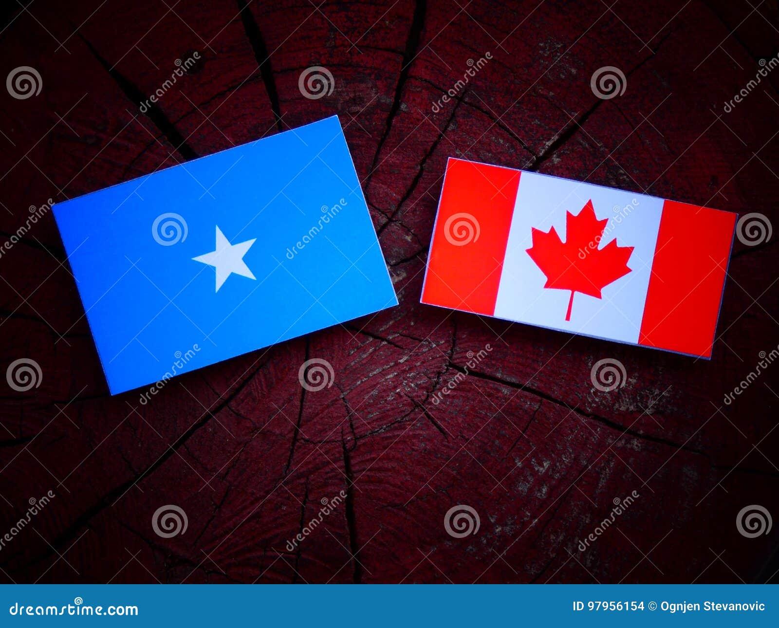 Somalian flaga z kanadyjczyk flaga na drzewnym fiszorku odizolowywającym
