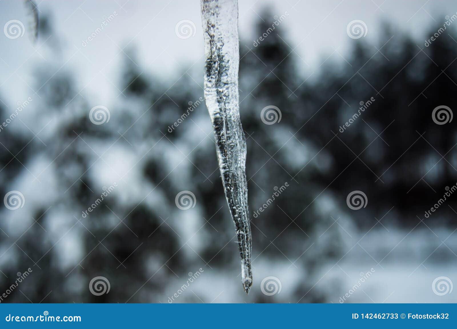 Sombere ijskegels die sneeuw smelten