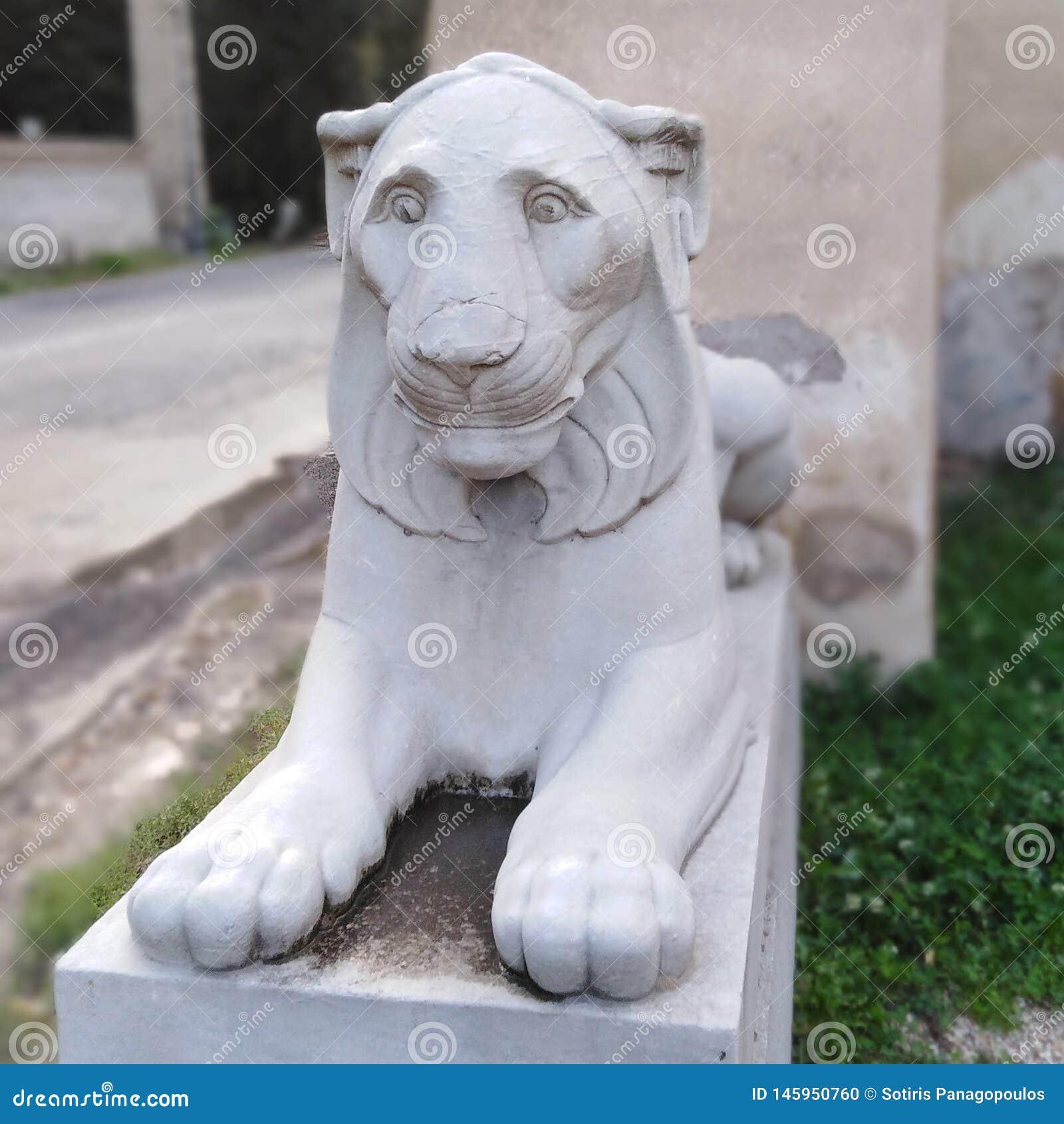 Sombere Leeuw
