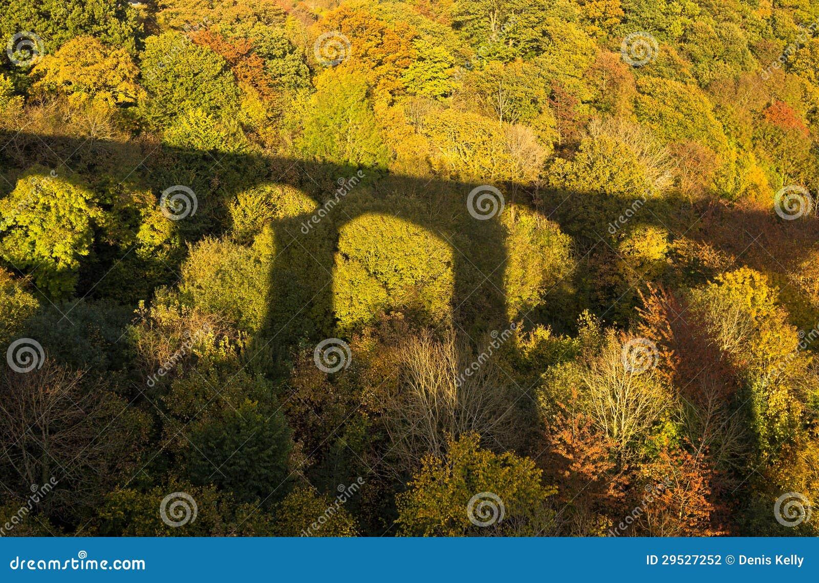 Sombra da ponte em cores da floresta do outono