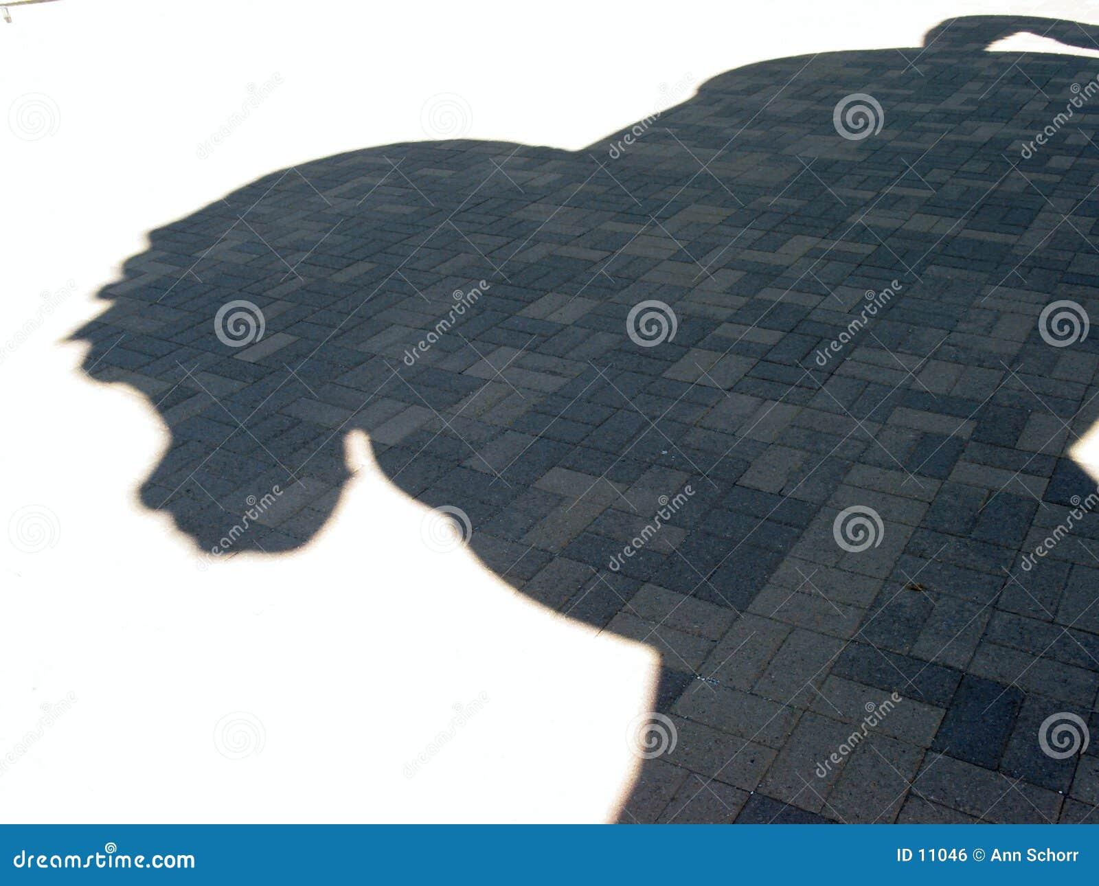 Sombra de Horseâs