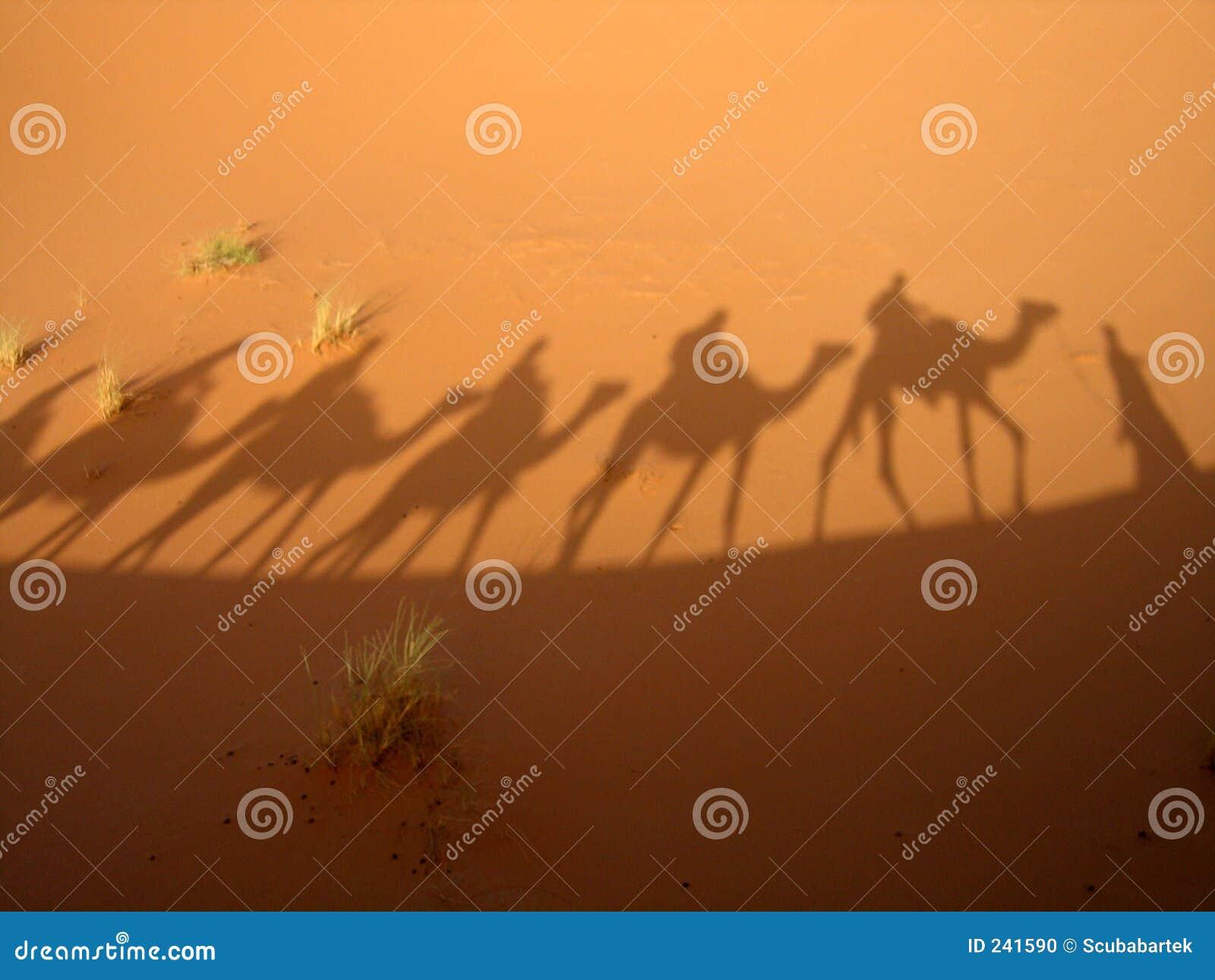 Sombra de la caravana