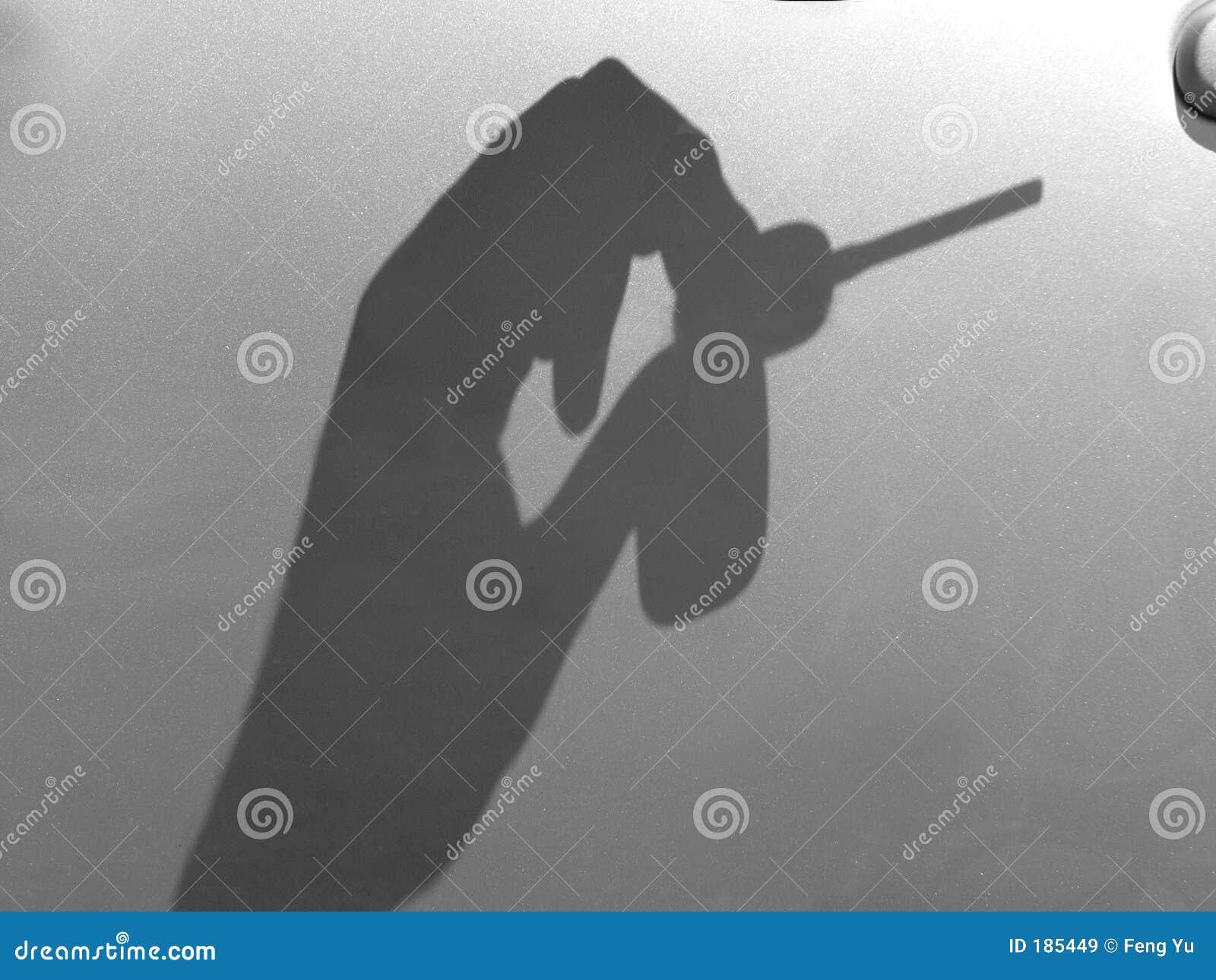 Sombra de la mano