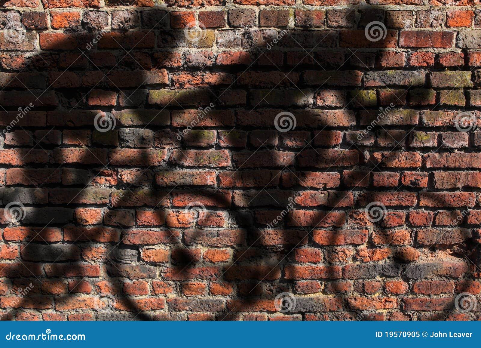 Sombra do ciclista na parede