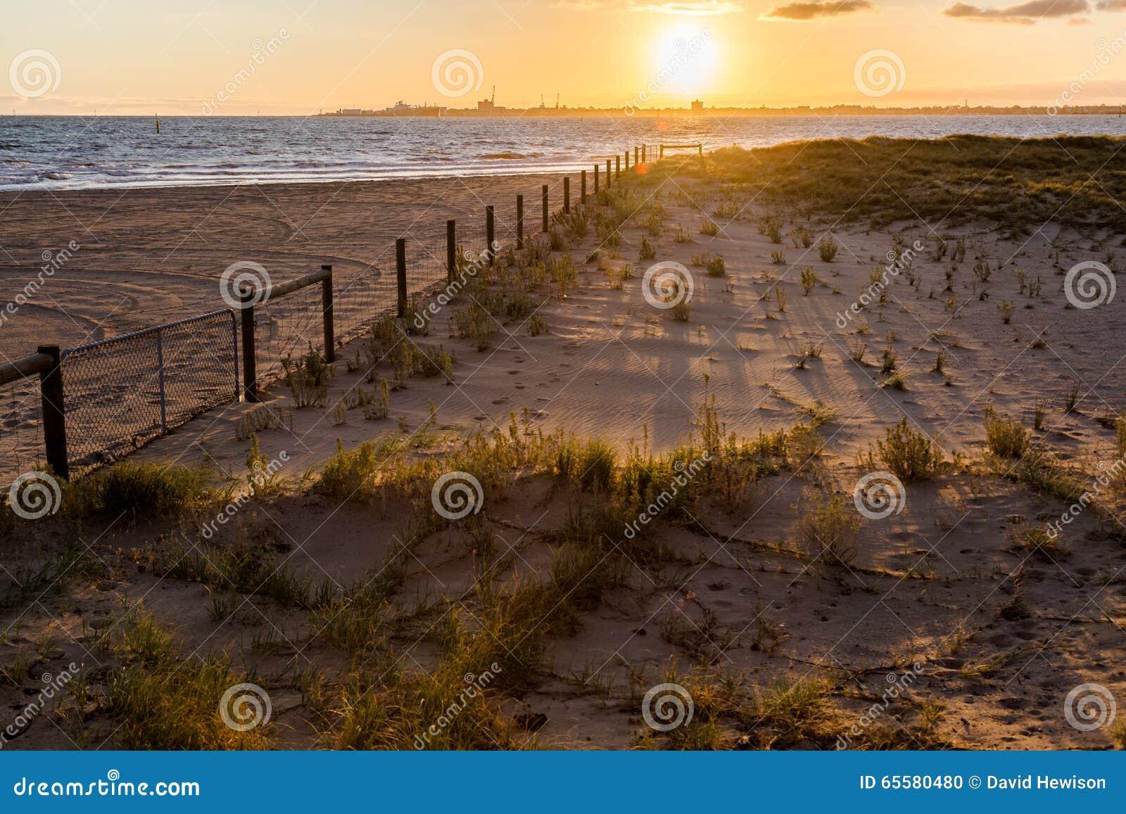 Sombras da carcaça do por do sol no ` da praia