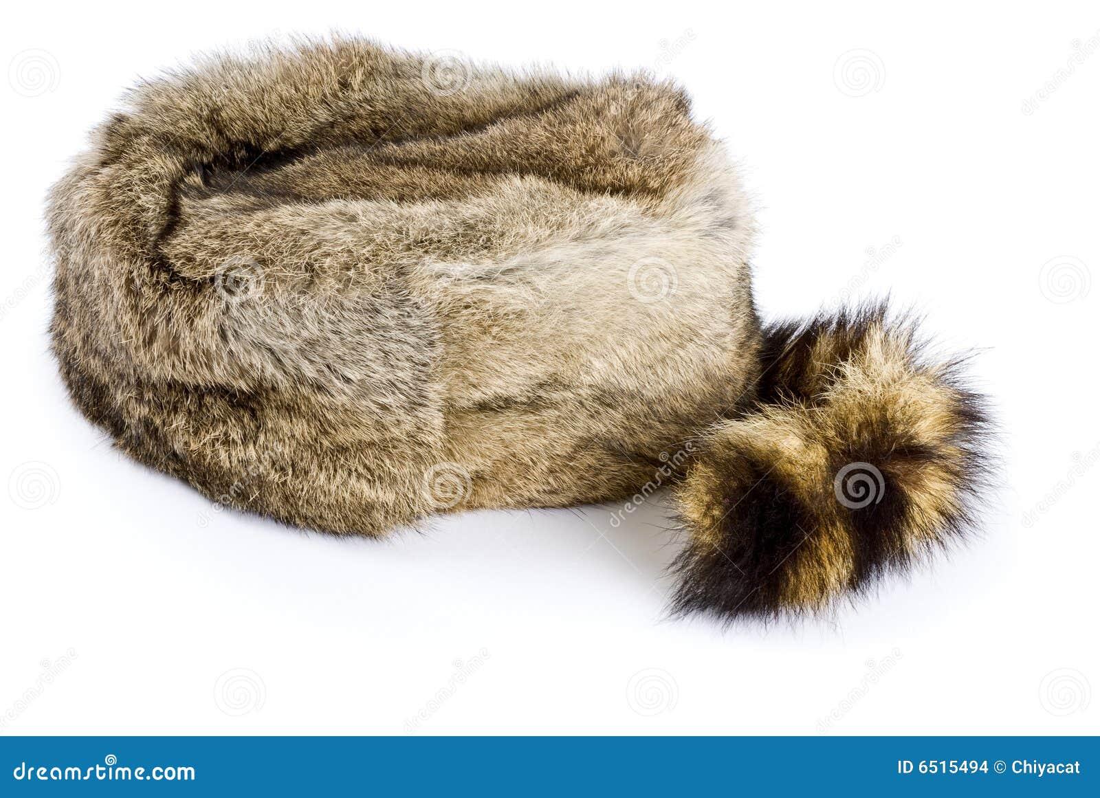 cliente primero nuevas variedades disfrute del envío de cortesía Sombrero del mapache foto de archivo. Imagen de cola ...