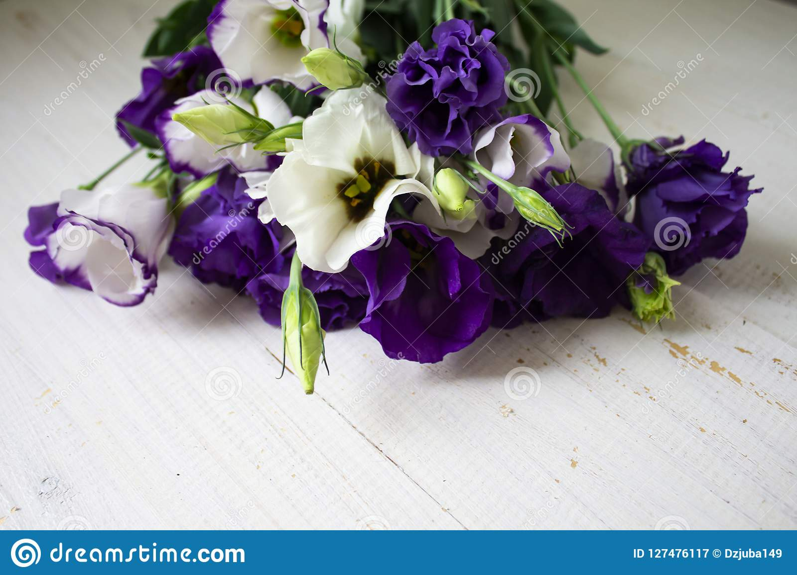 Some Flowers In The Garden Stock Image Image Of Background 127476117