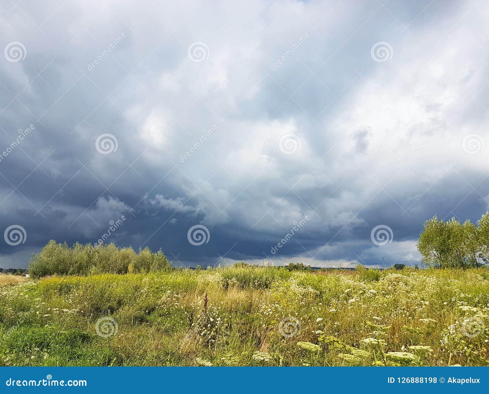 Sommaräng i strålarna av solen med en överhängande åskmoln Väderändring Storm på en solig dag Natur av tempererad cli
