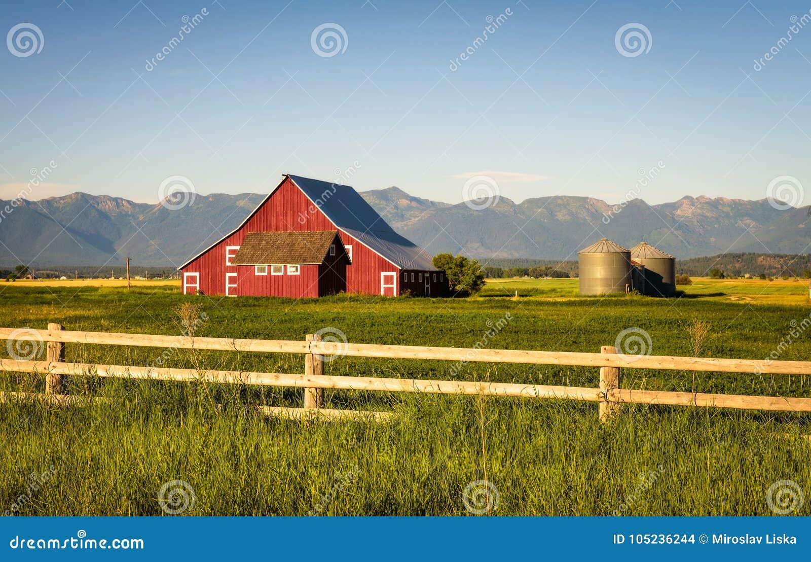 Sommarafton med en röd ladugård i lantliga Montana