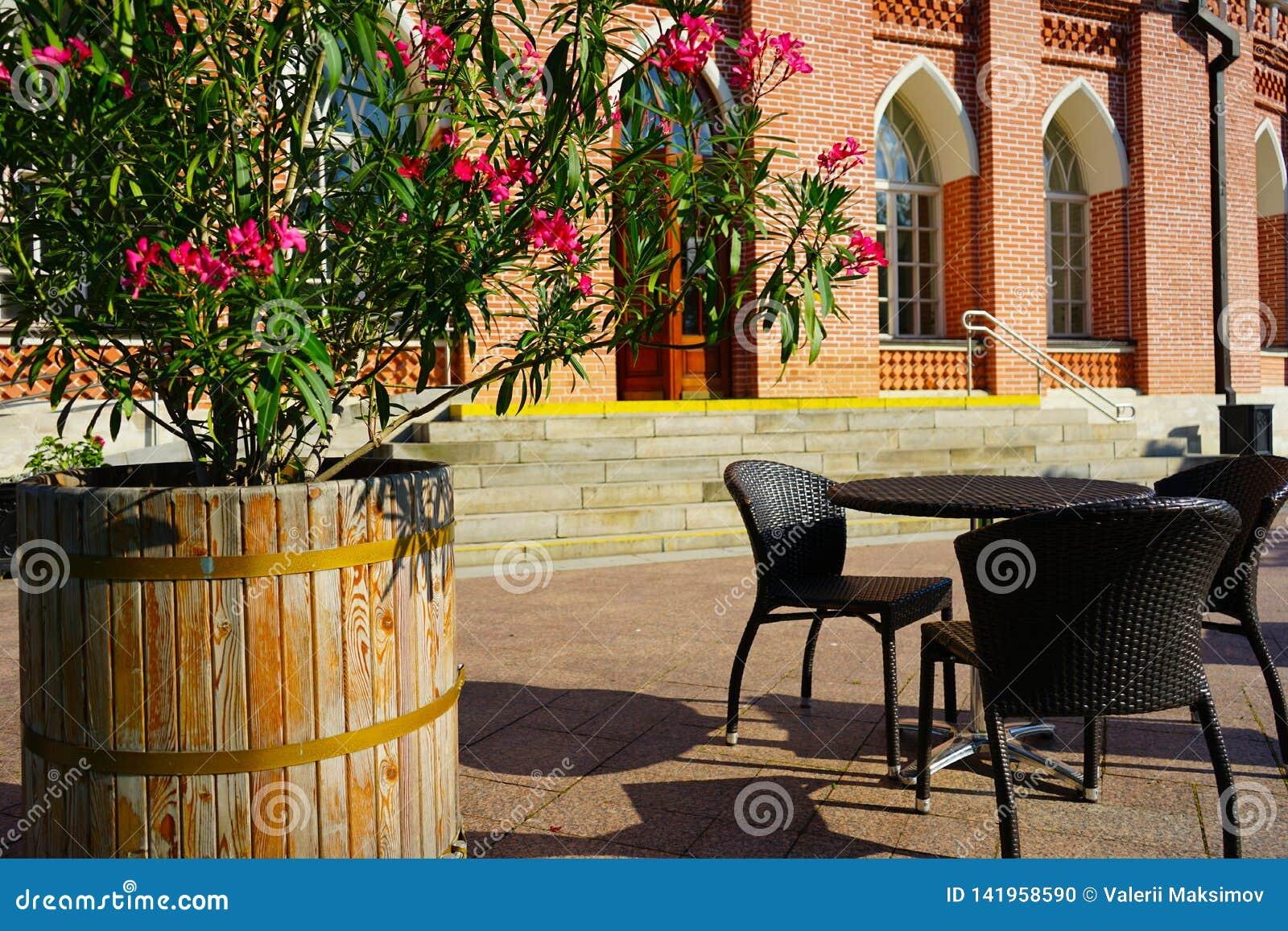 Sommargatakafé med blommor på bakgrunden av historiska byggnaden