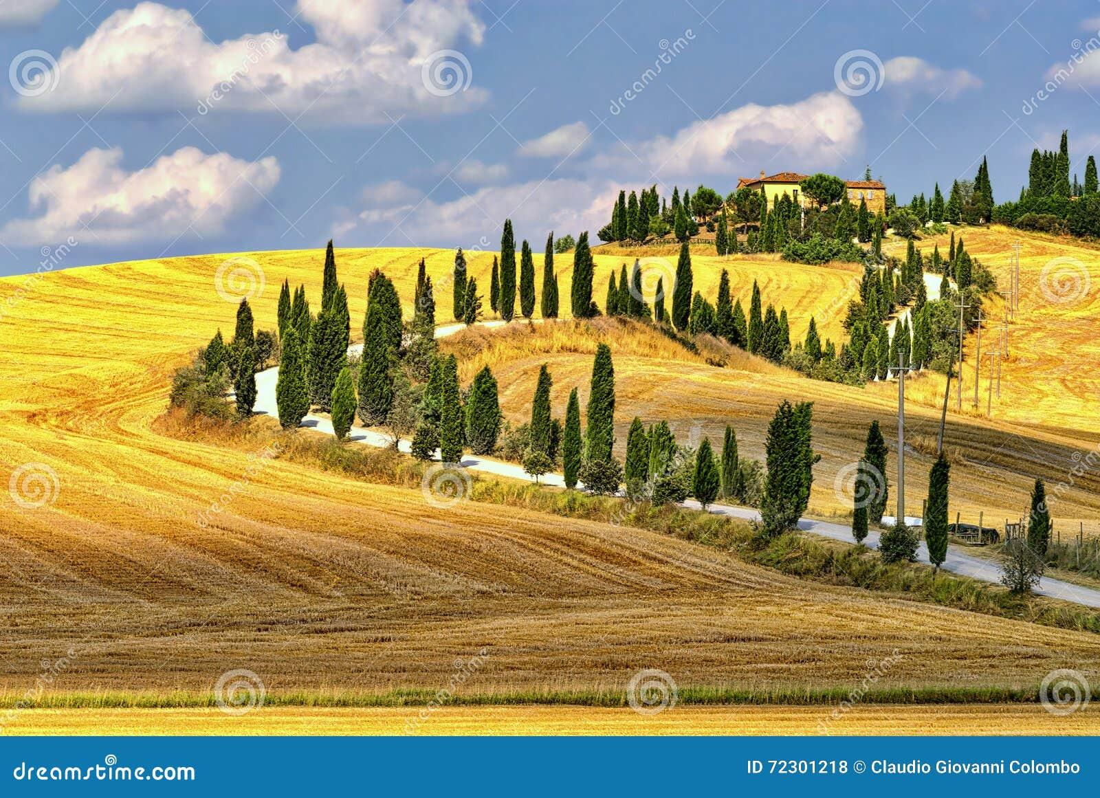 Sommarlandskap i Tuscany på sommar