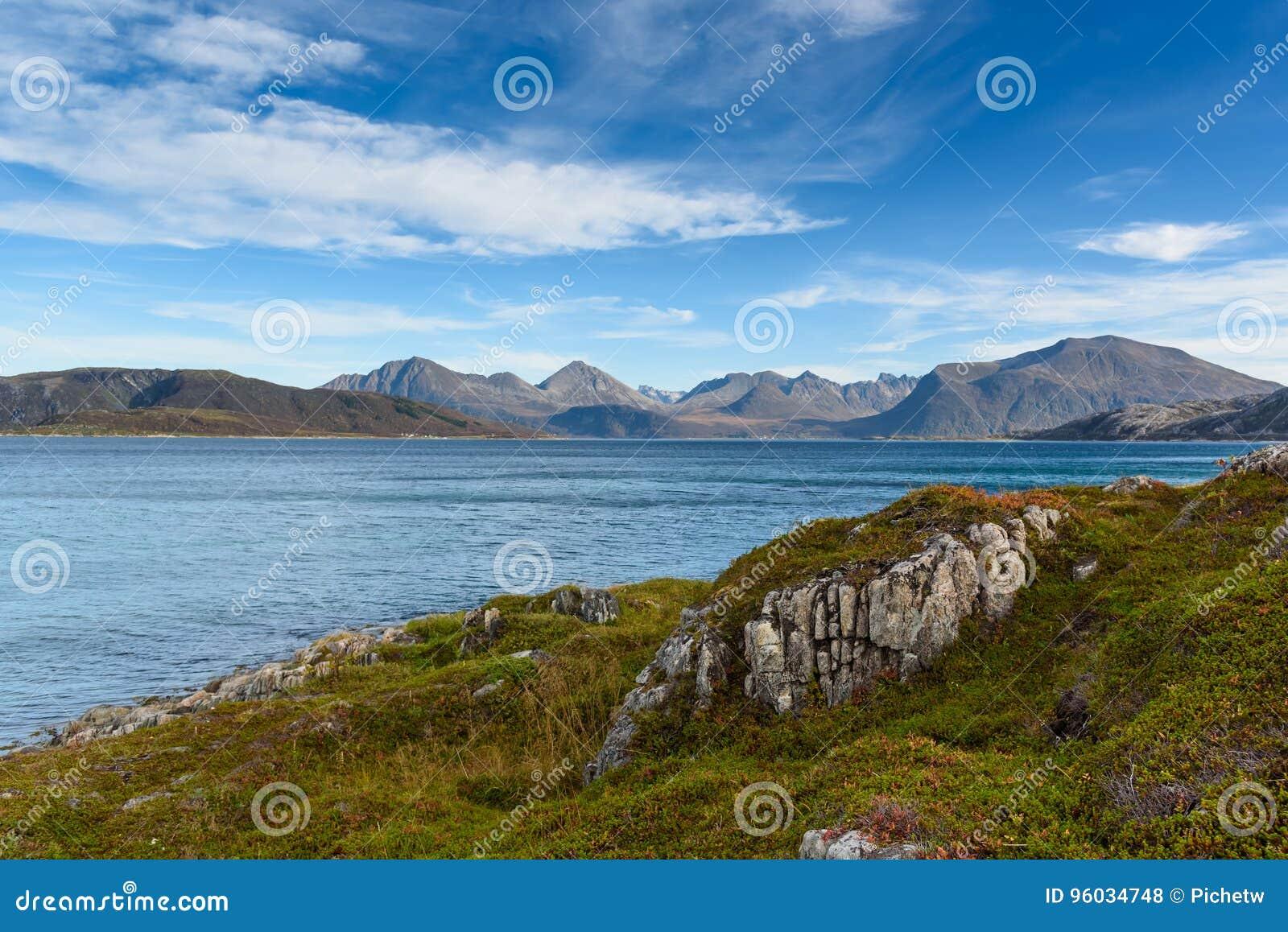 Sommaroy wyspa, Tromso, Norwegia, Scandinavia, selekcyjna ostrość