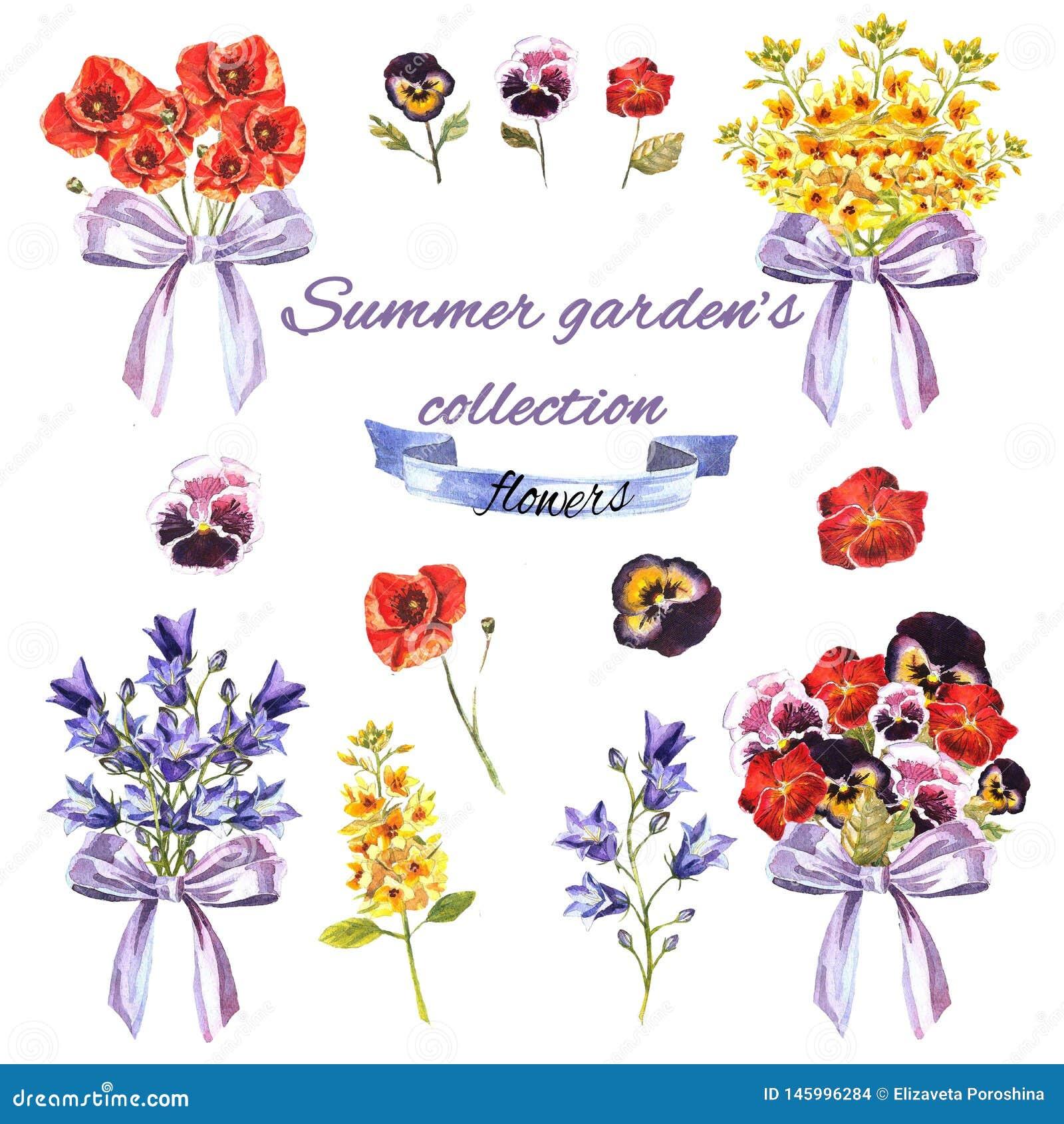 Sommarträdgårds uppsättning med blommor och buketter
