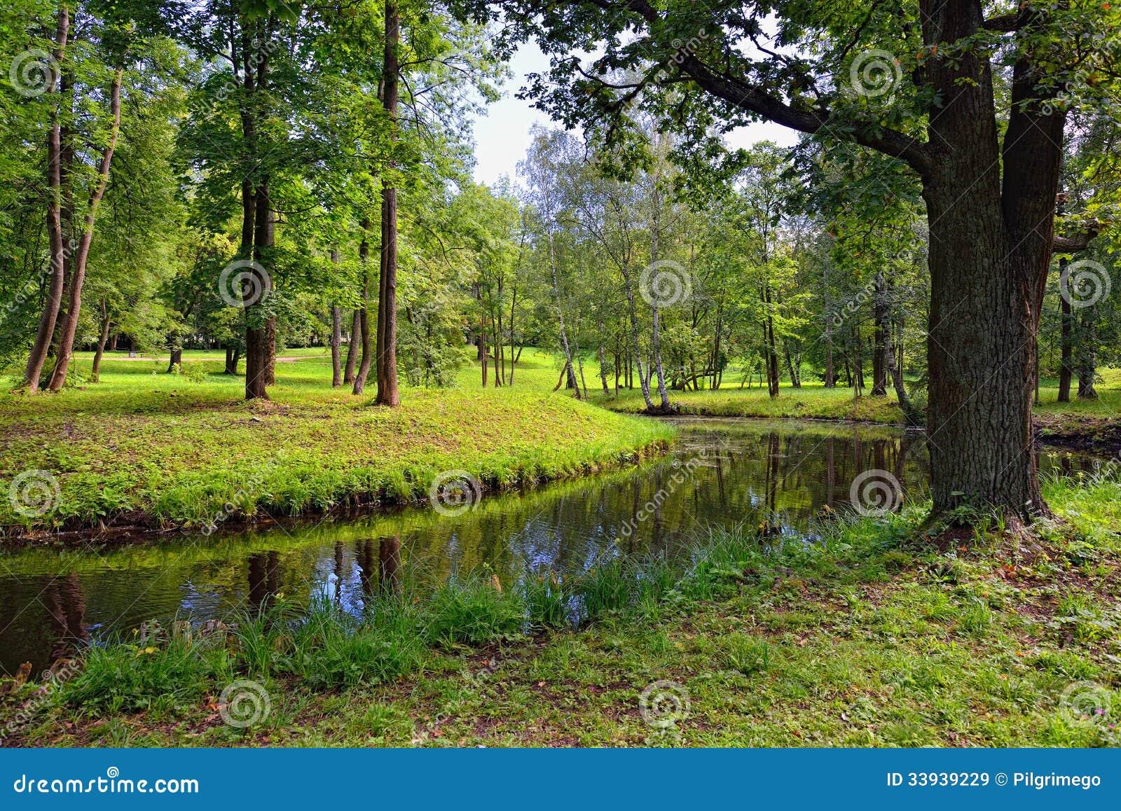 sommer landschaft mit see in gatchina garten lizenzfreie stockbilder bild 33939229. Black Bedroom Furniture Sets. Home Design Ideas