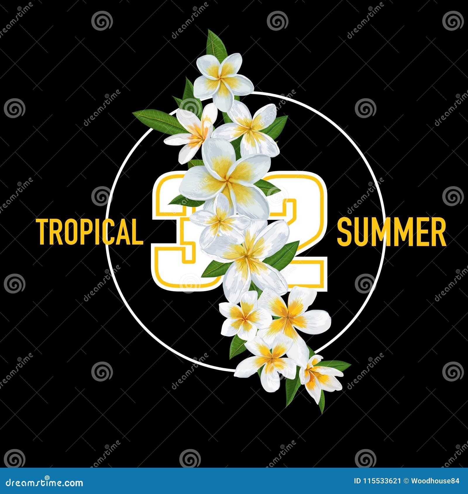 Sommer Tropischer Hintergrund Mit Plumeria Blumen Und Palmblttern Exotisches Typografisches Design Fr Abdeckung T Shirt Plakat Verkaufs Fahne Auch Im