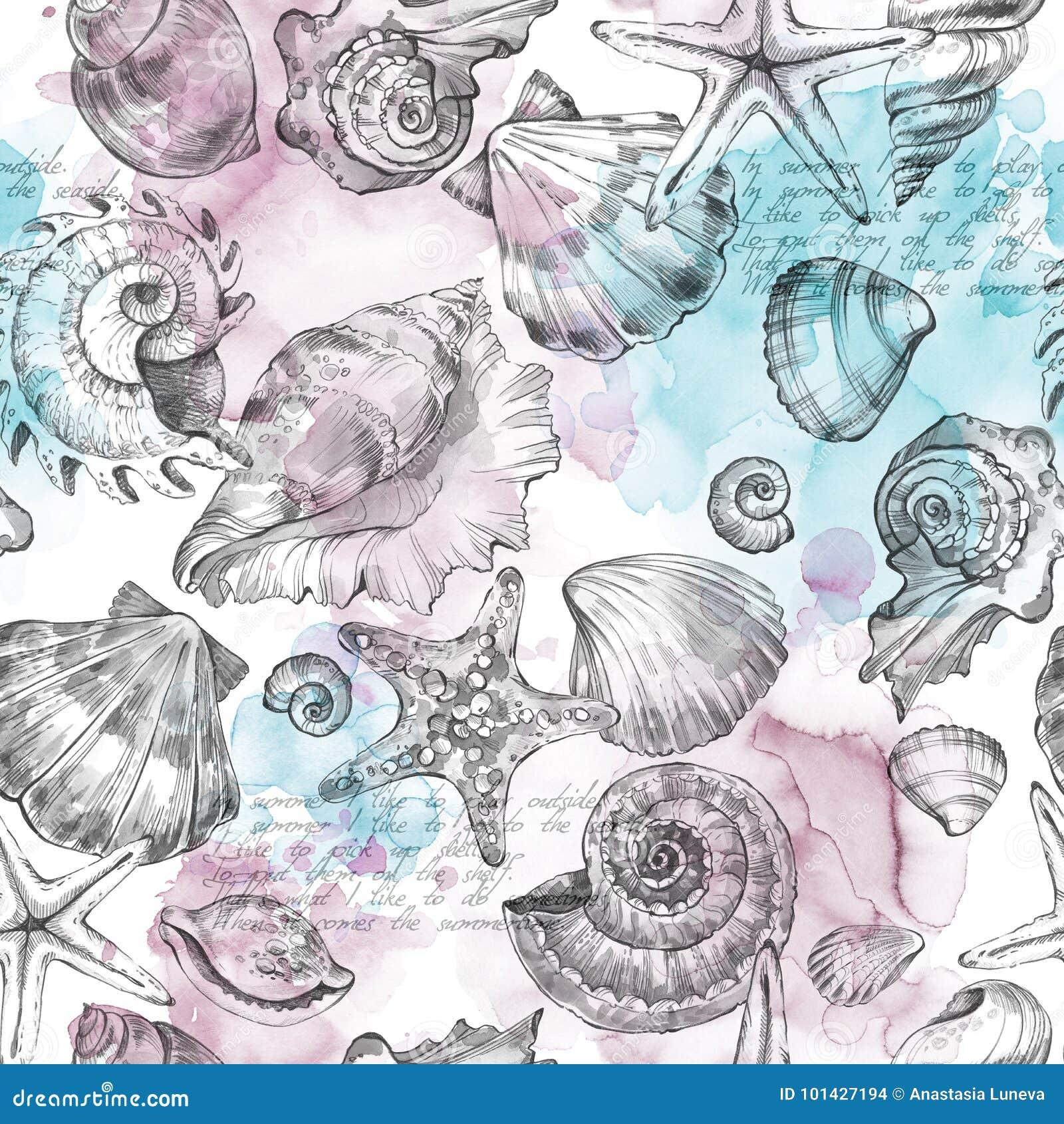 Sommerfestfeiertagshintergrund, Aquarellillustration Nahtloses Muster mit Seeoberteilen, -mollusken, -text und -farbe