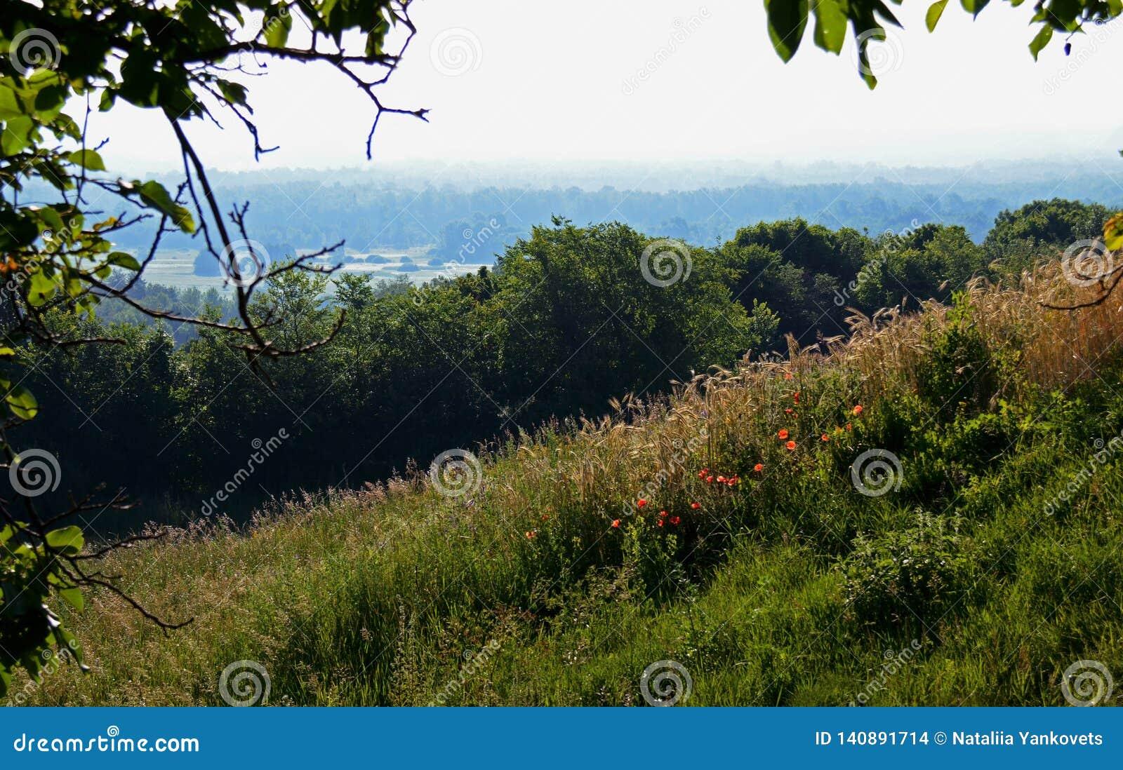 Sommerlandschaft mit Staubstraßen unter hohen grünen Hügeln