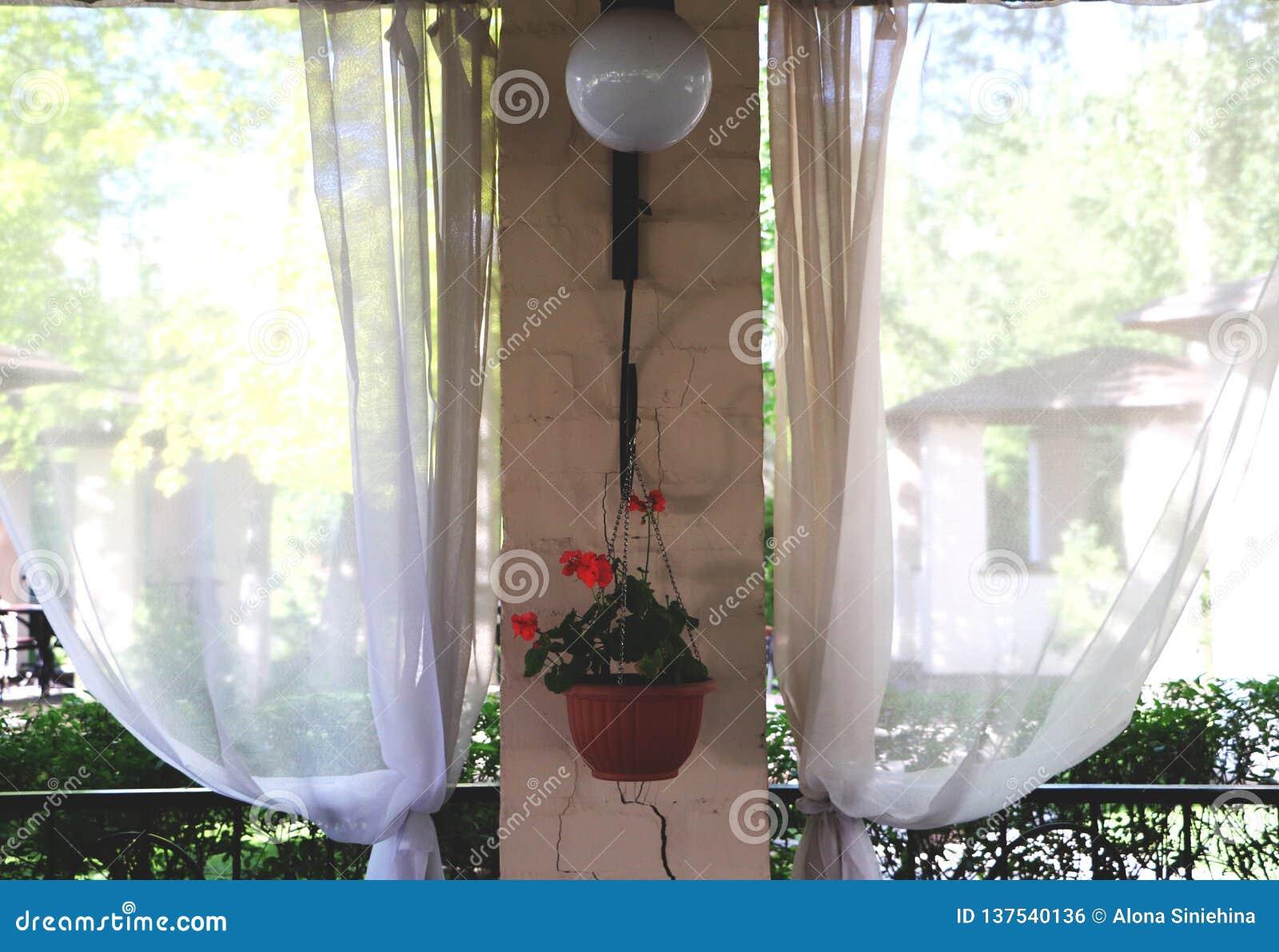 Sommerrestaurantterrasse oder Verandainnenraum mit offenem Raum Grasdekor- und -gartenansicht