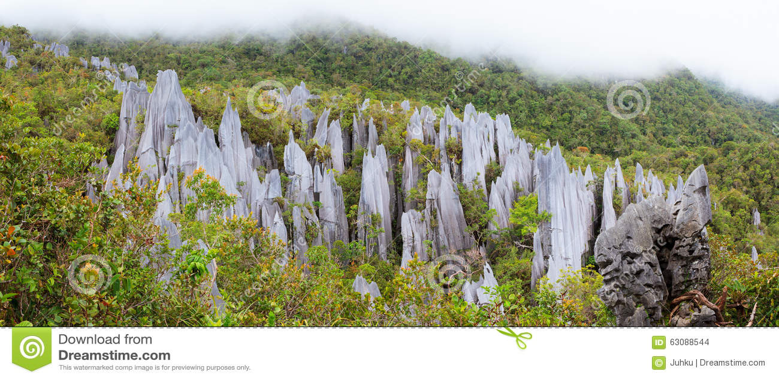 Download Sommets De Chaux Au Parc National De Mulu De Gunung Photo stock - Image du panorama, paysage: 63088544