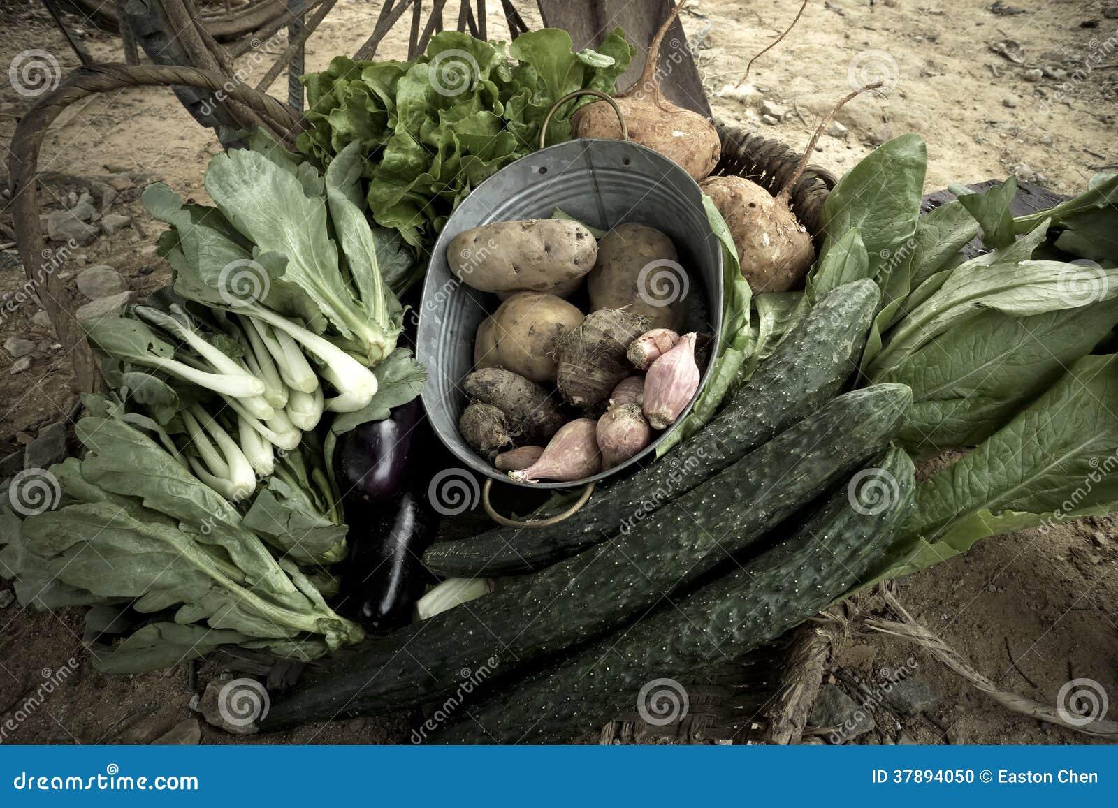 Sommige verse groenten
