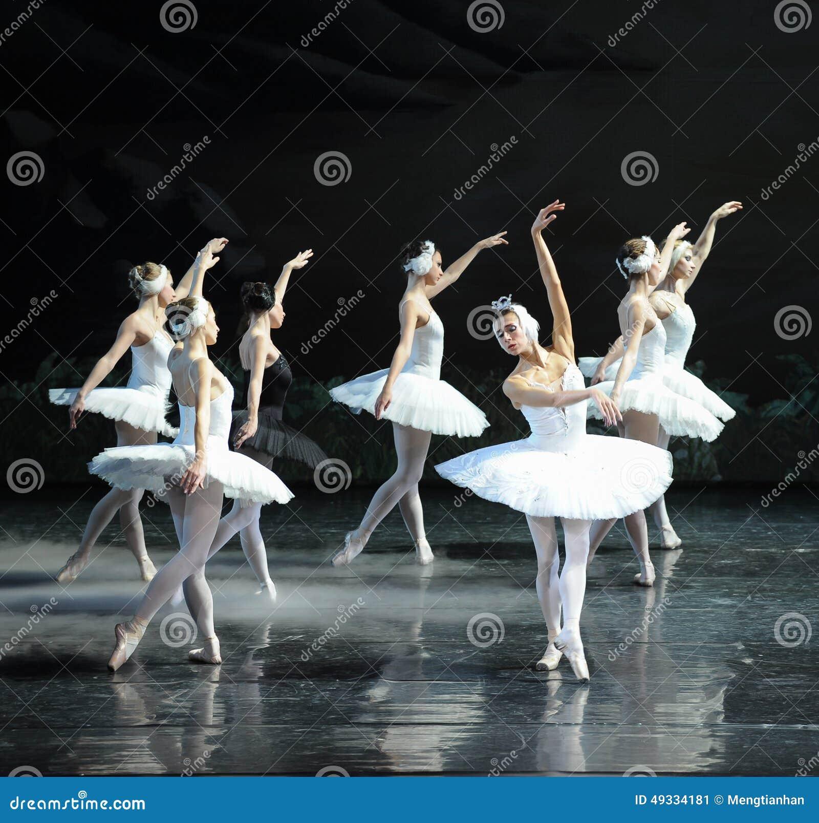 Son Ojta navré est revenu au lac swan de tribu-ballet de cygne