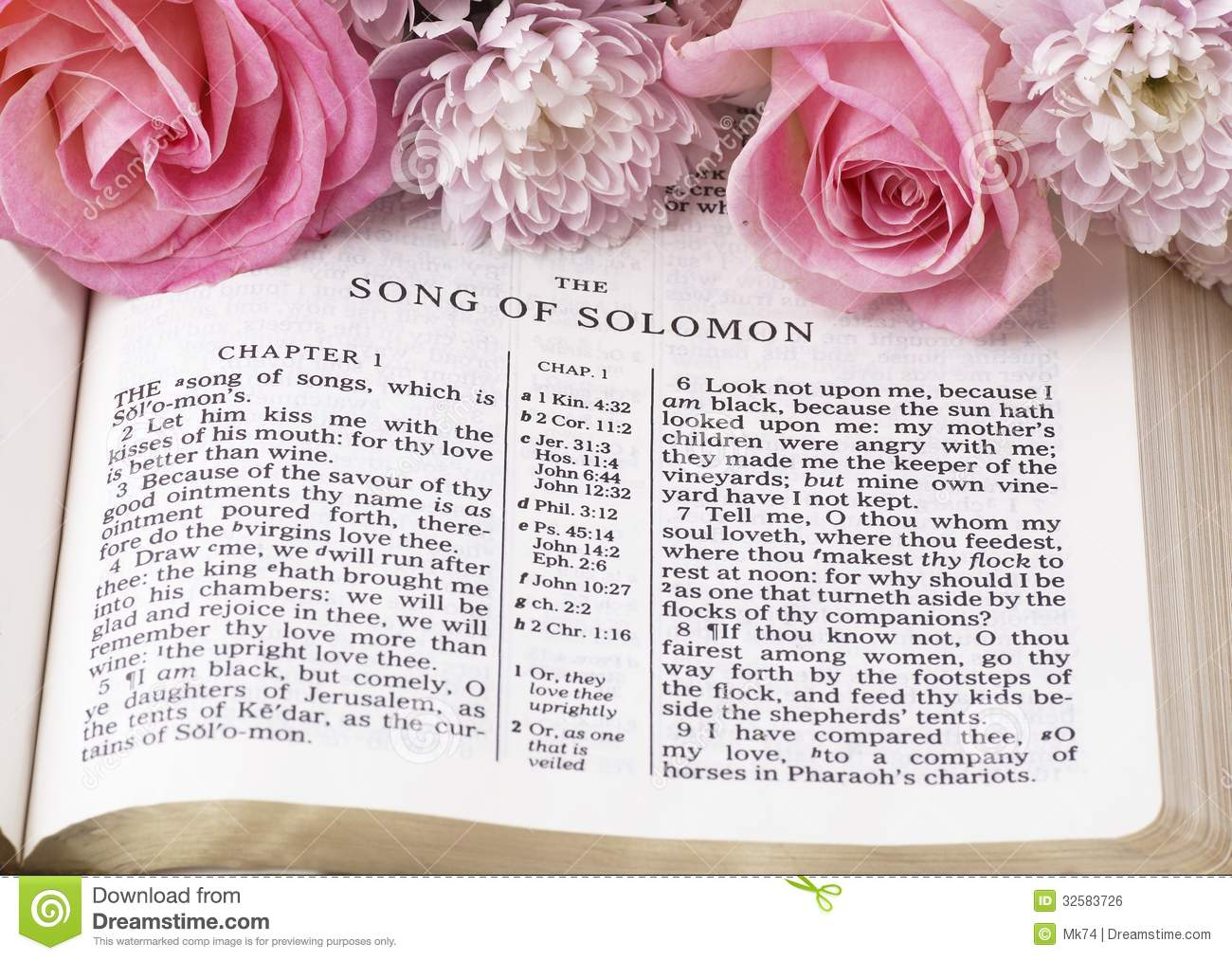 song of solomon royalty free stock image image 32583726