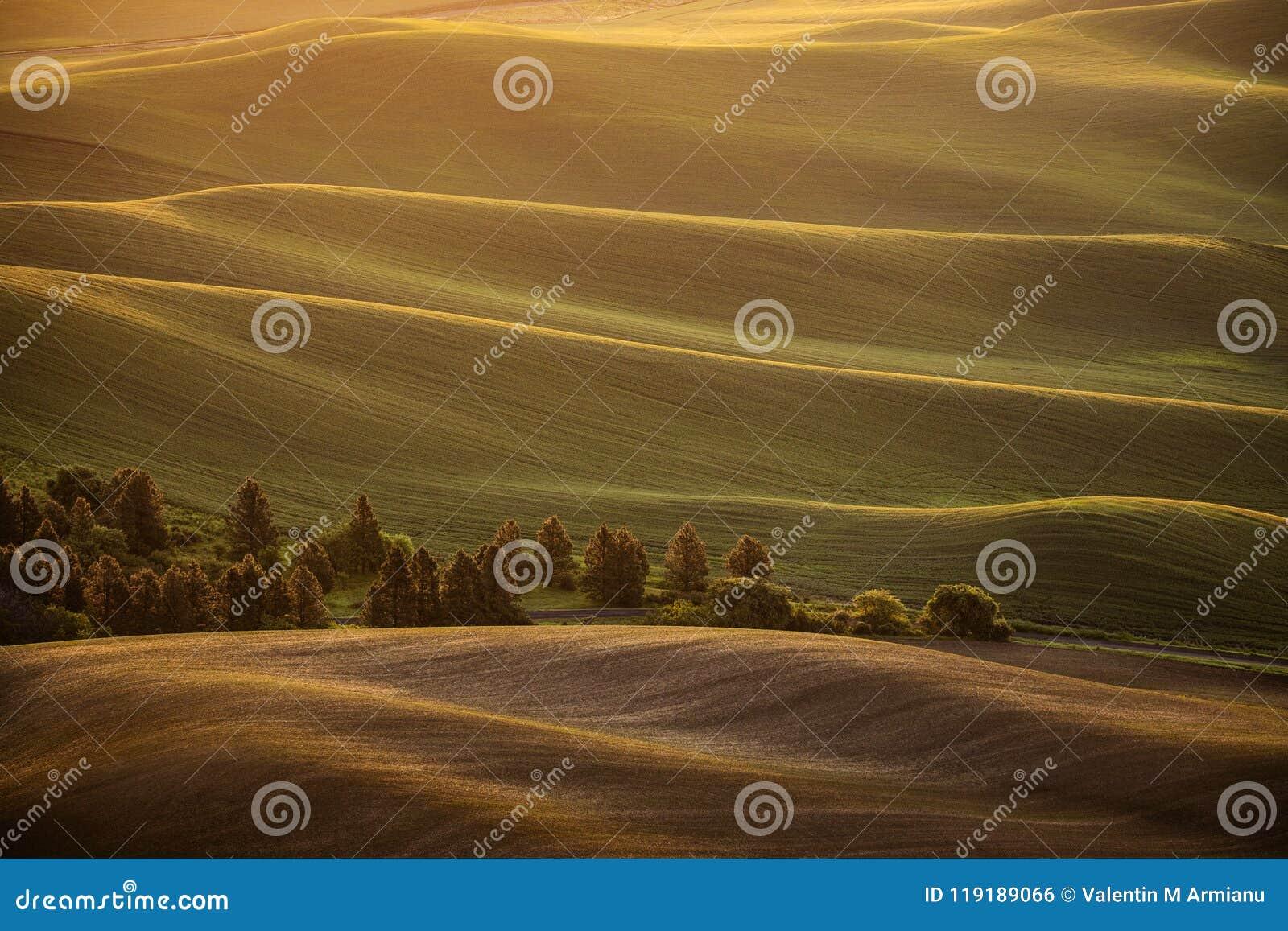 Sonnenaufgang über Rollenlandhügeln