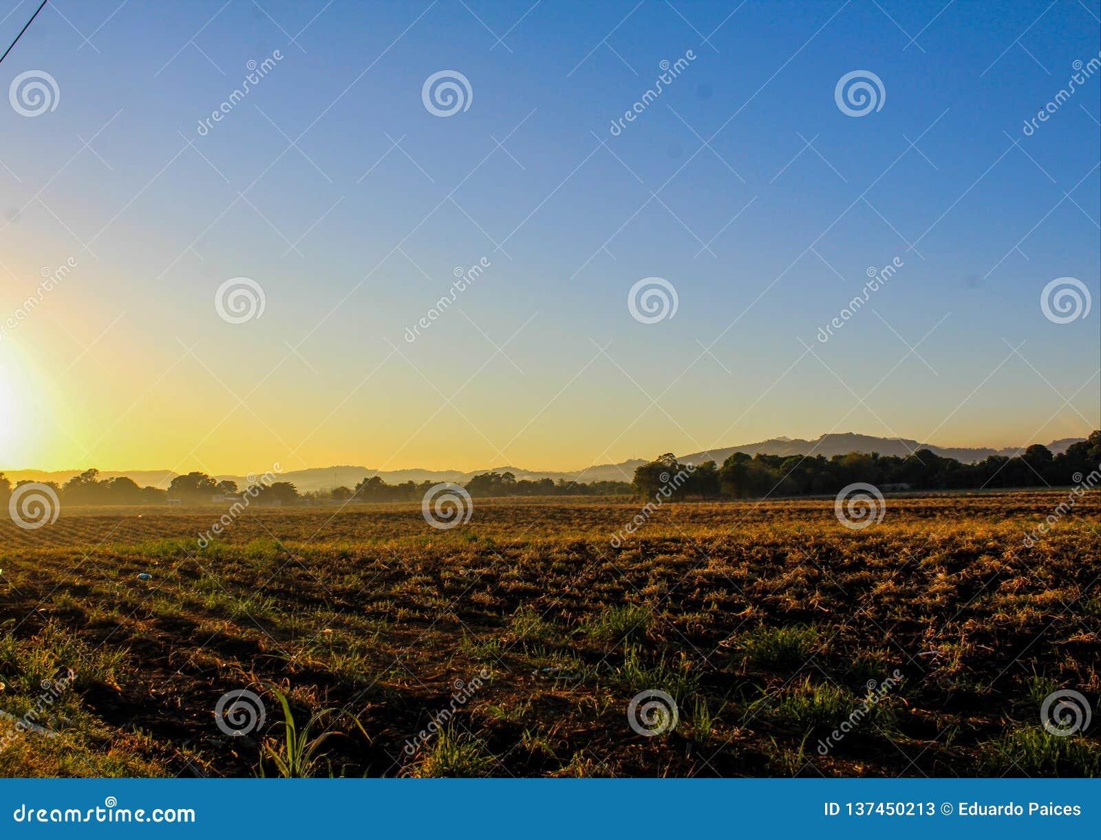 Sonnenaufgang im Land