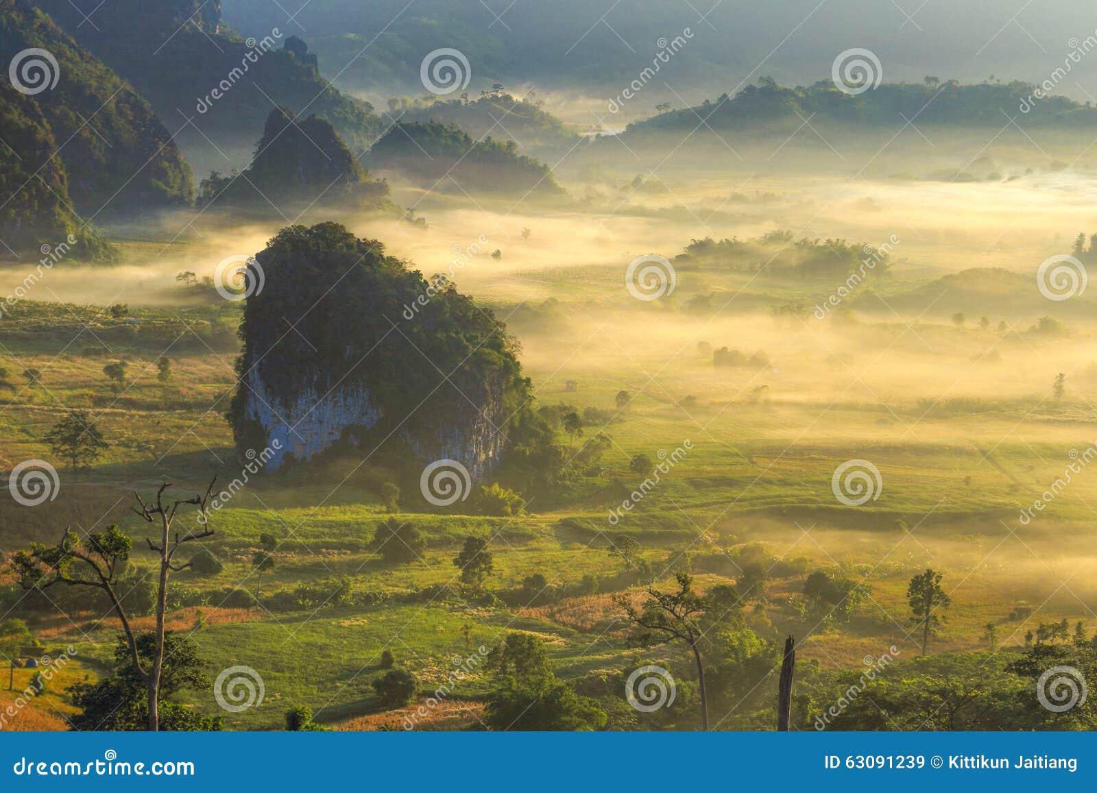 Sonnenaufgang-Nebel