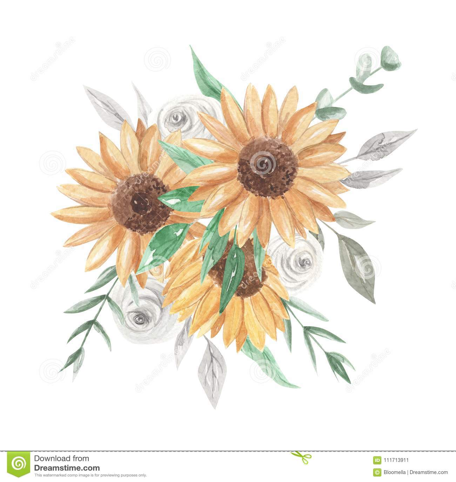 Sonnenblumen Aquarell Blumenstrausse Clipart Bluht Weisse Rosen Stock
