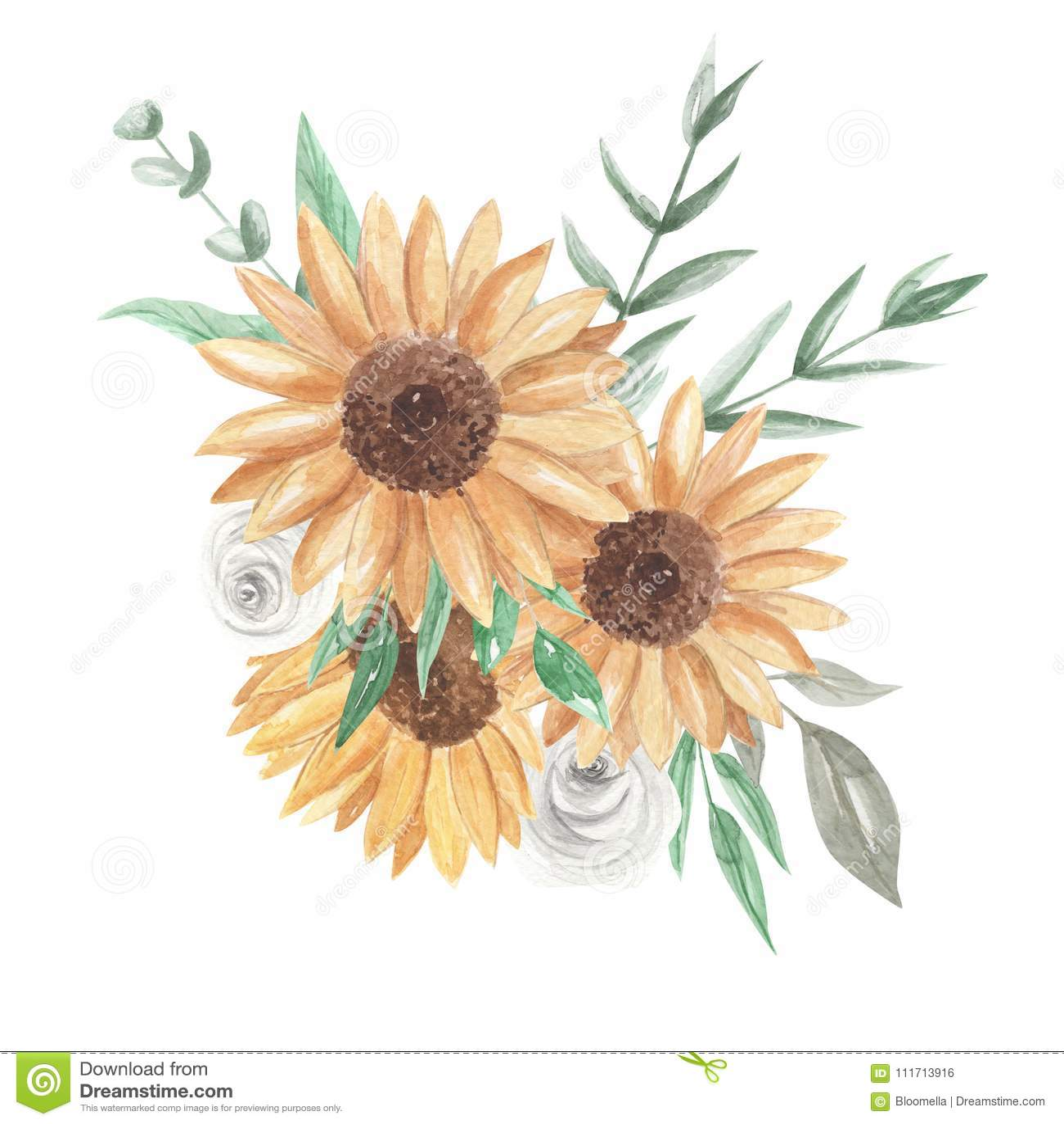 Sonnenblumen Aquarell Blumenstrausse Hubsches Clipart Bluht Weisse