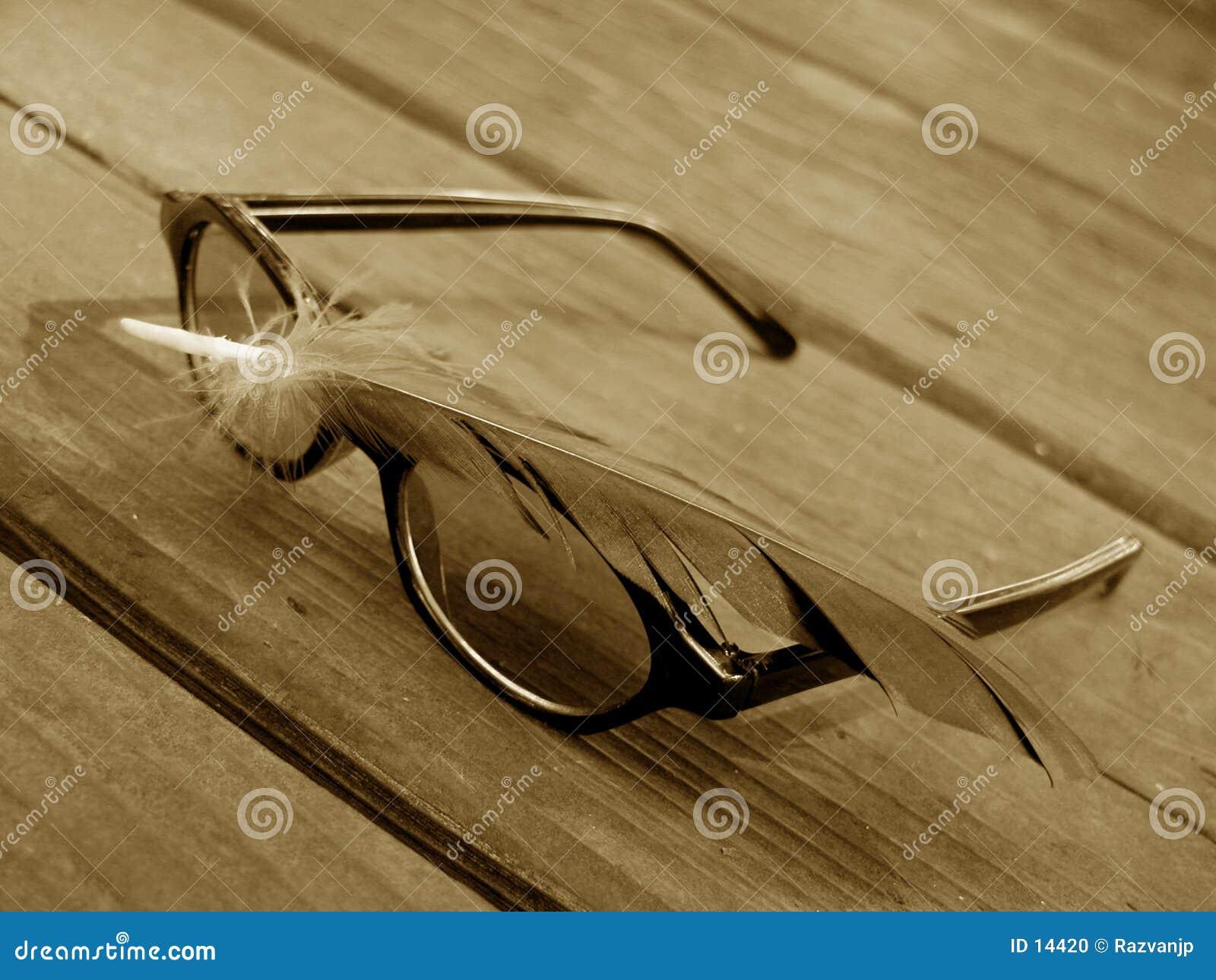 Sonnenbrillen und Feder 2