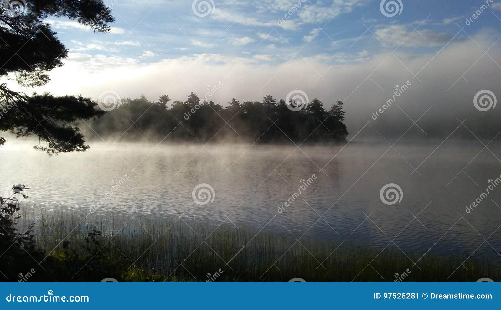 Sonnenlicht, das den Nebel klärt