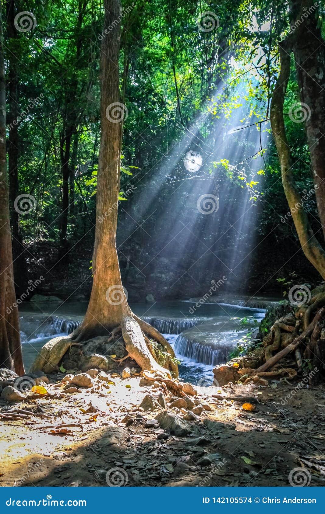 Sonnenlichtströme durch Bäume und ein rundes Spinnennetz an Nationalpark Erawan mit Wasserfällen im Hintergrund größer