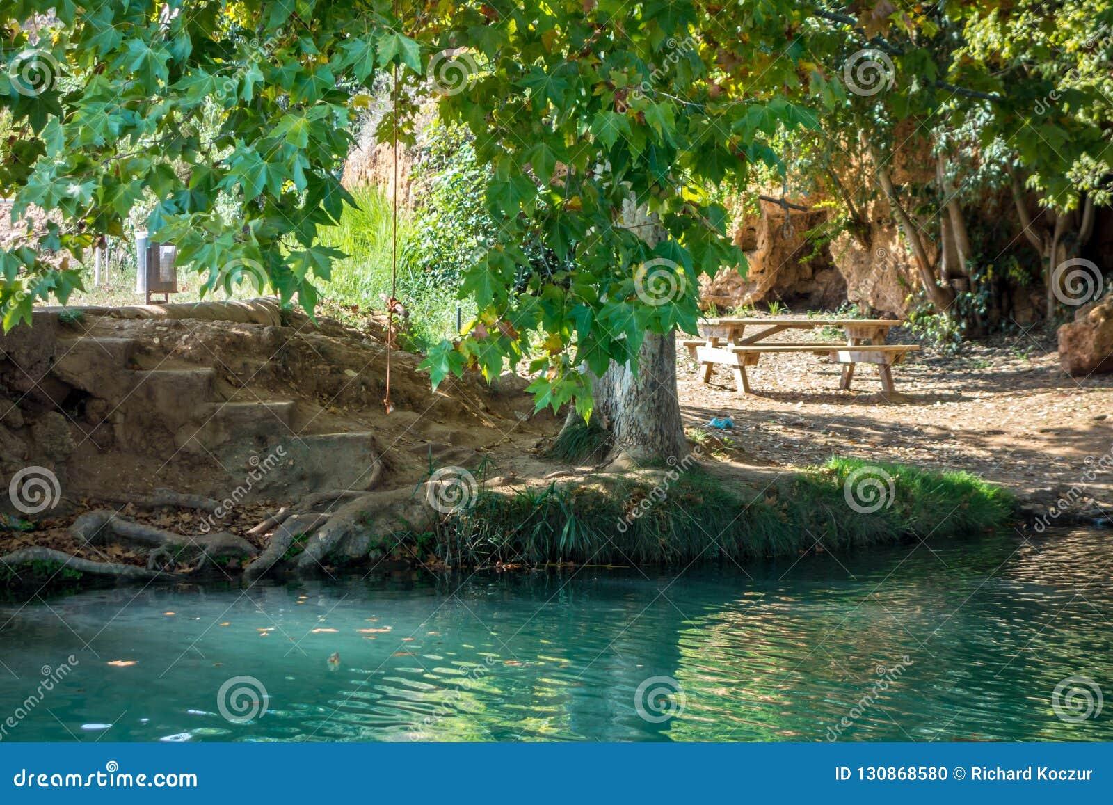 Sonnenstrahl macht seine Weise durch die Blätter zum Wasser an ¡ n Gorgo CatalÃ